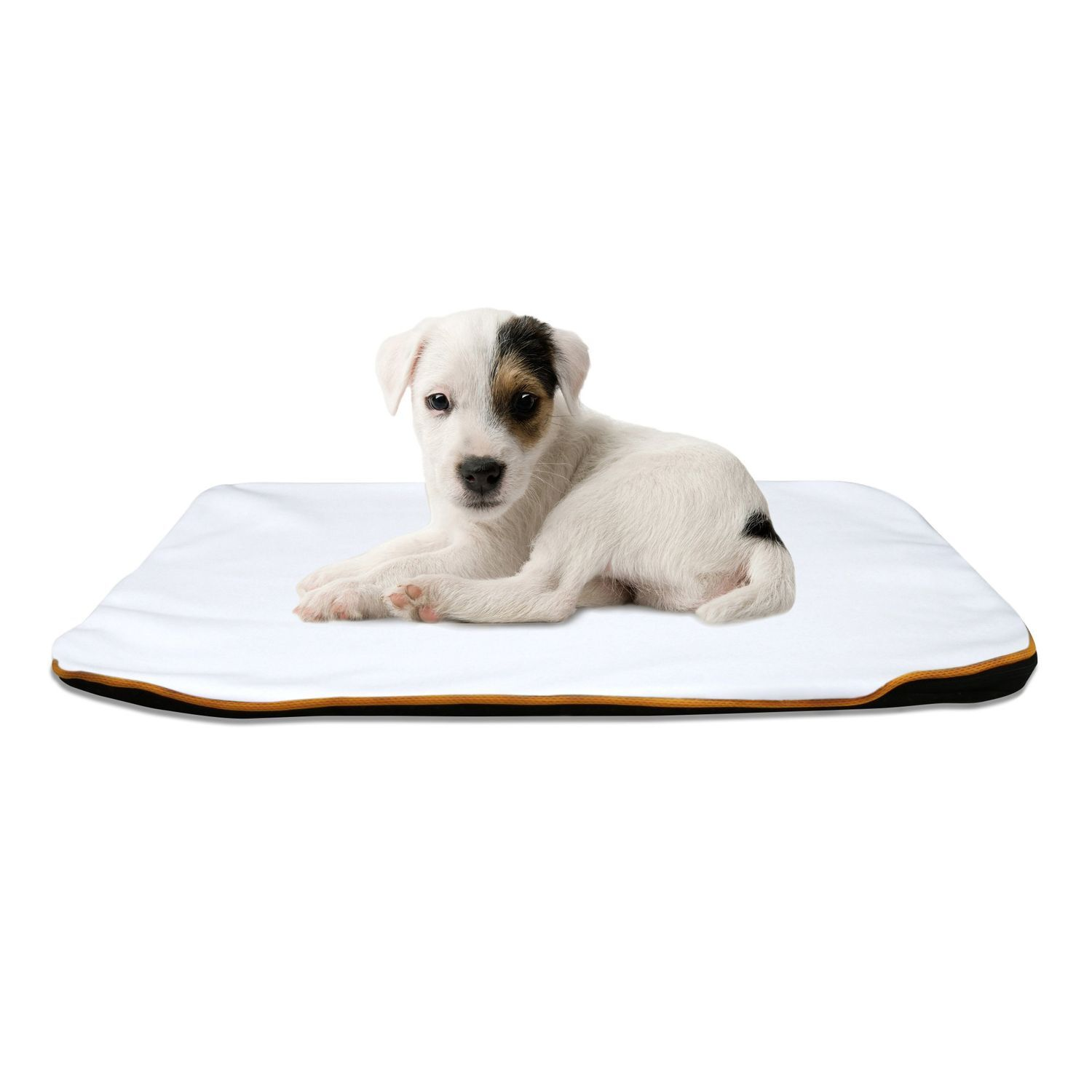 Dunnes Indoor Pet Bed Mat with Free Cover Color: White, Size: 0.8