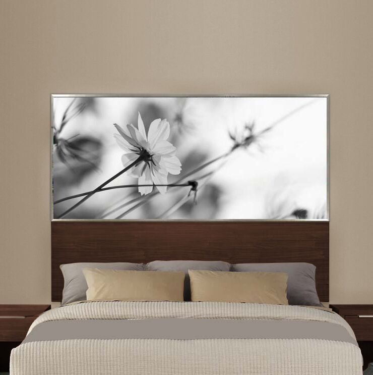 Reprise Panel Headboard Color: Cocobala, Size: King