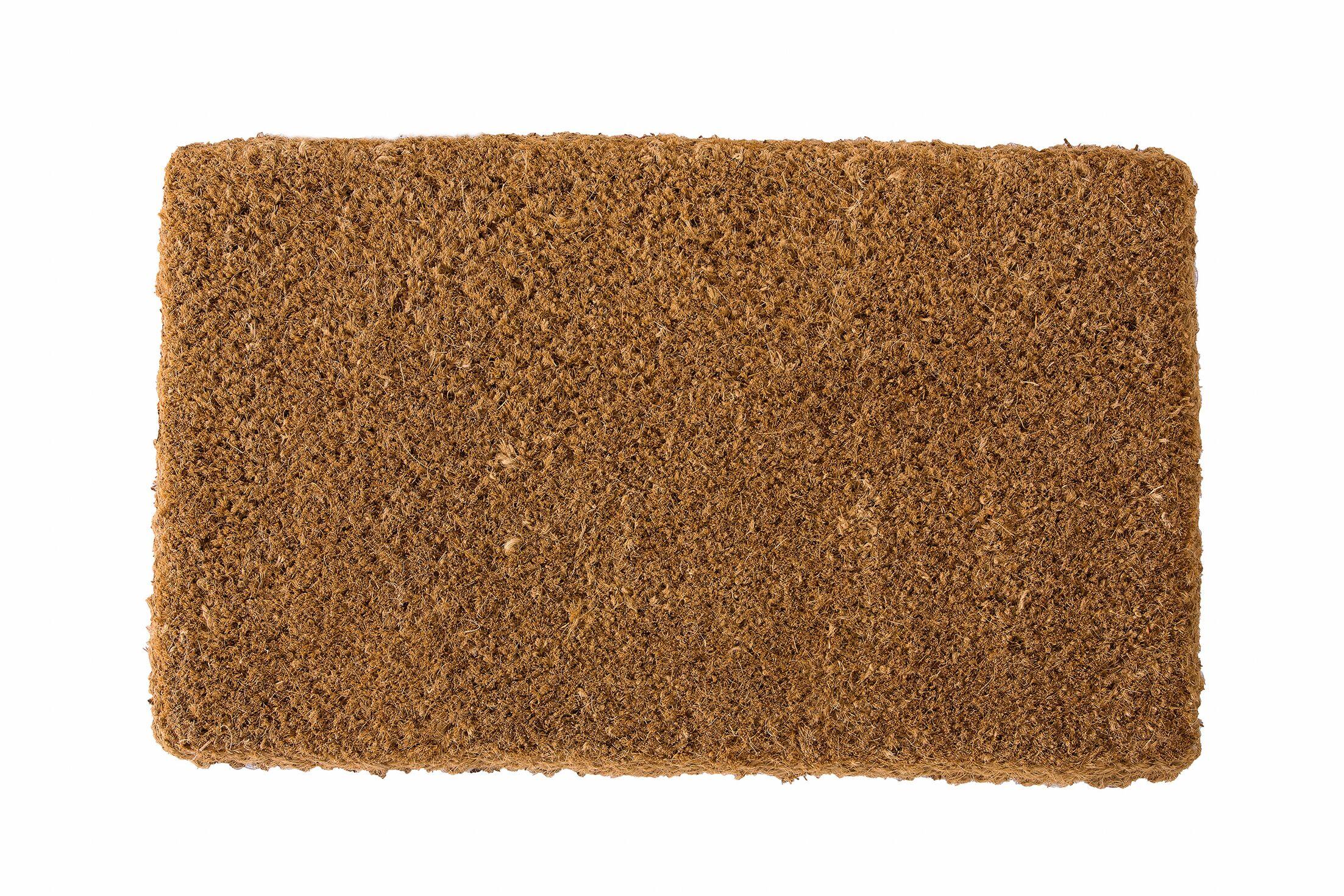 Pearce Coir Handwoven Doormat Mat Size: Rectangle 26