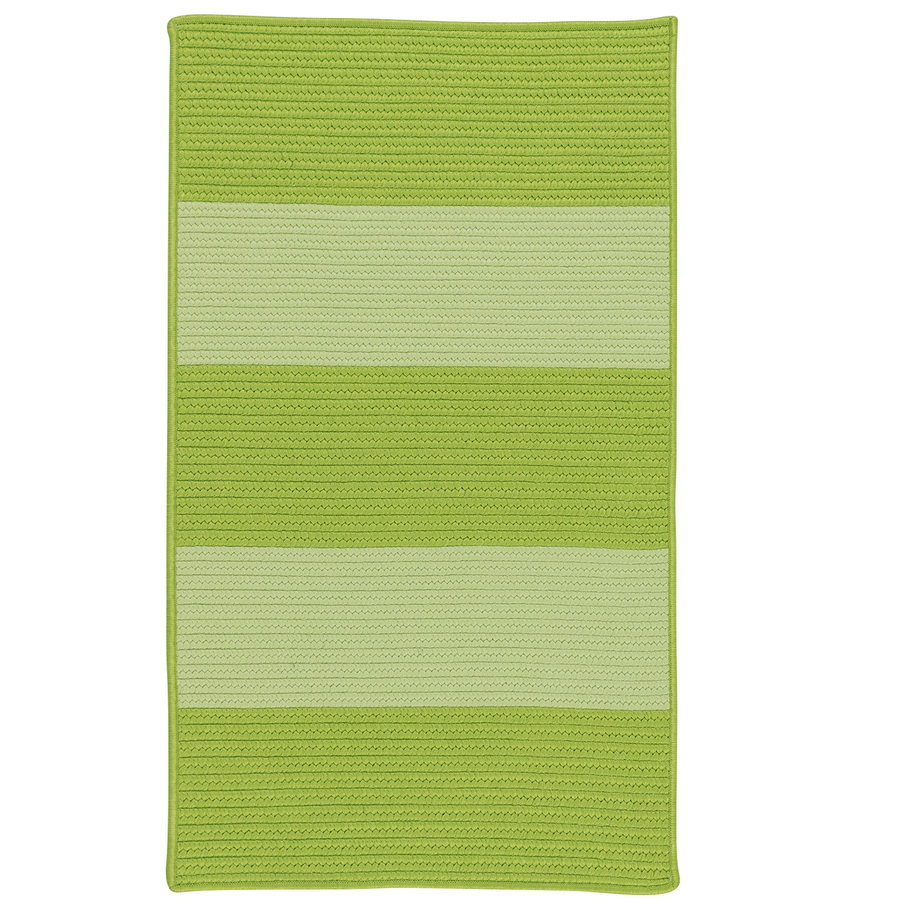 Javen Hand-Braided Green Indoor/Outdoor Area Rug Rug Size: Rectangle 8' x 11'