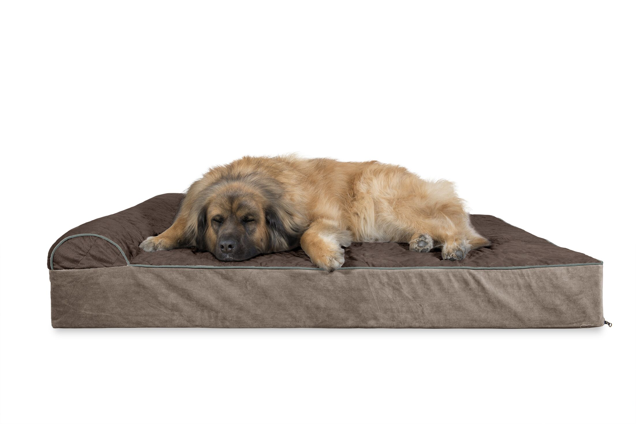 Digby Quilted Goliath Chaise Lounge Dog Sofa Color: Espresso, Size: Extra Large (11