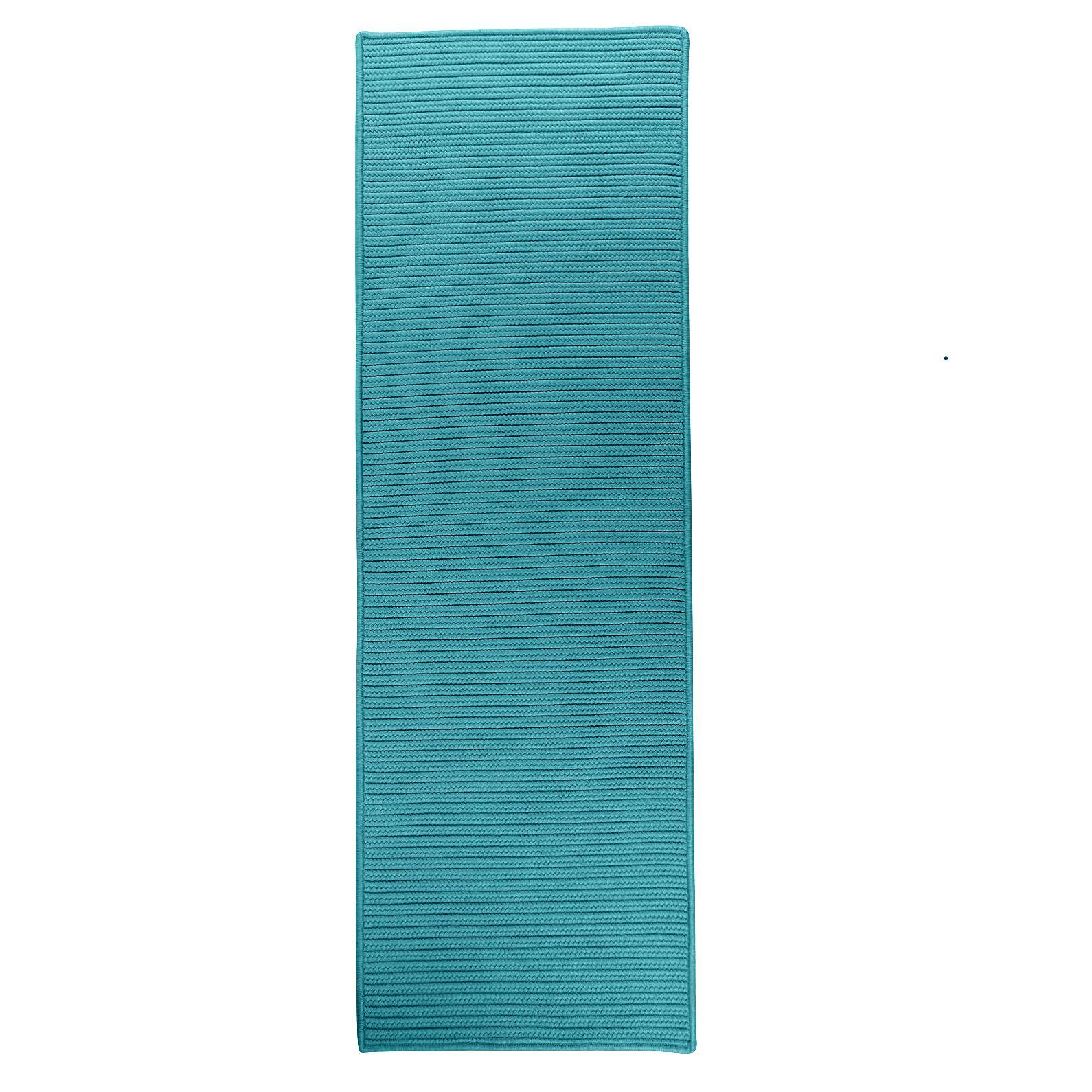 Julissa Reversible Hand-Braided Green Indoor/Outdoor Area Rug Rug Size: Runner 2'4