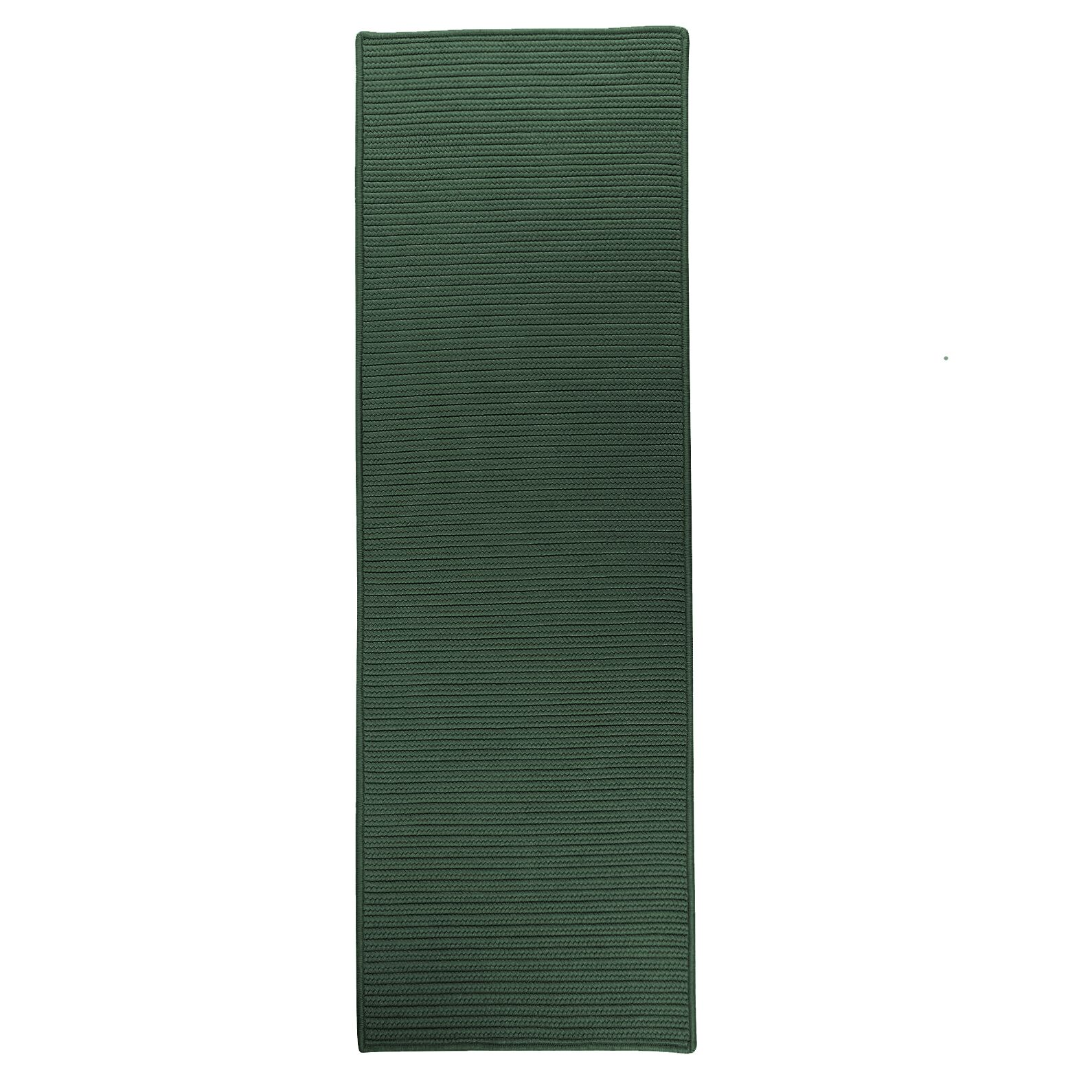 Annika Reversible Hand-Braided Green Indoor/Outdoor Area Rug Rug Size: Runner 2'4