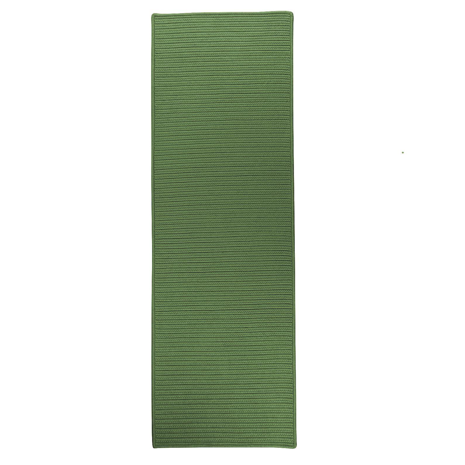 Ashlee Reversible Hand-Braided Green Indoor/Outdoor Area Rug Rug Size: Runner 2'4
