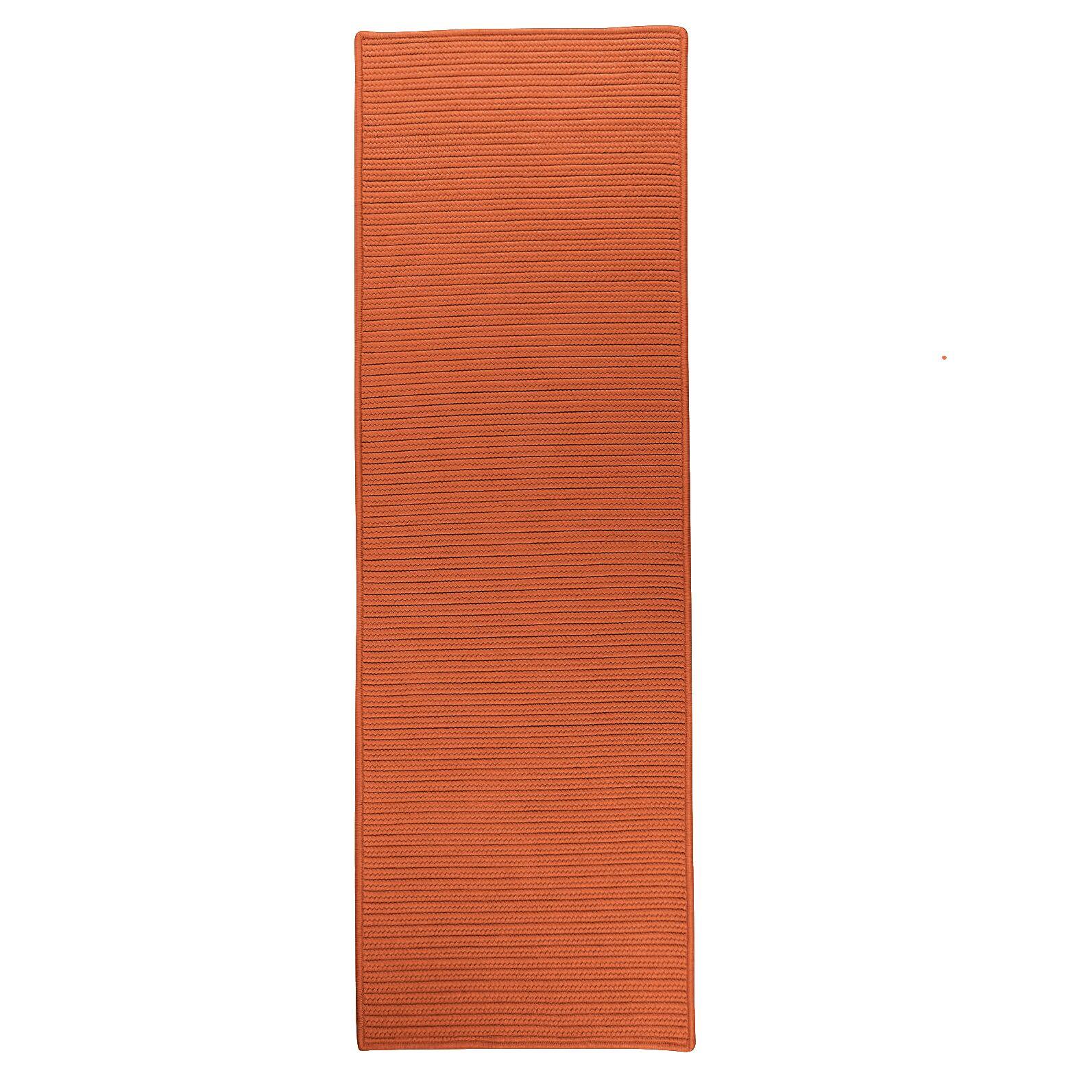 Bryanna Reversible Hand-Braided Orange Indoor/Outdoor Area Rug Rug Size: Runner 2'4