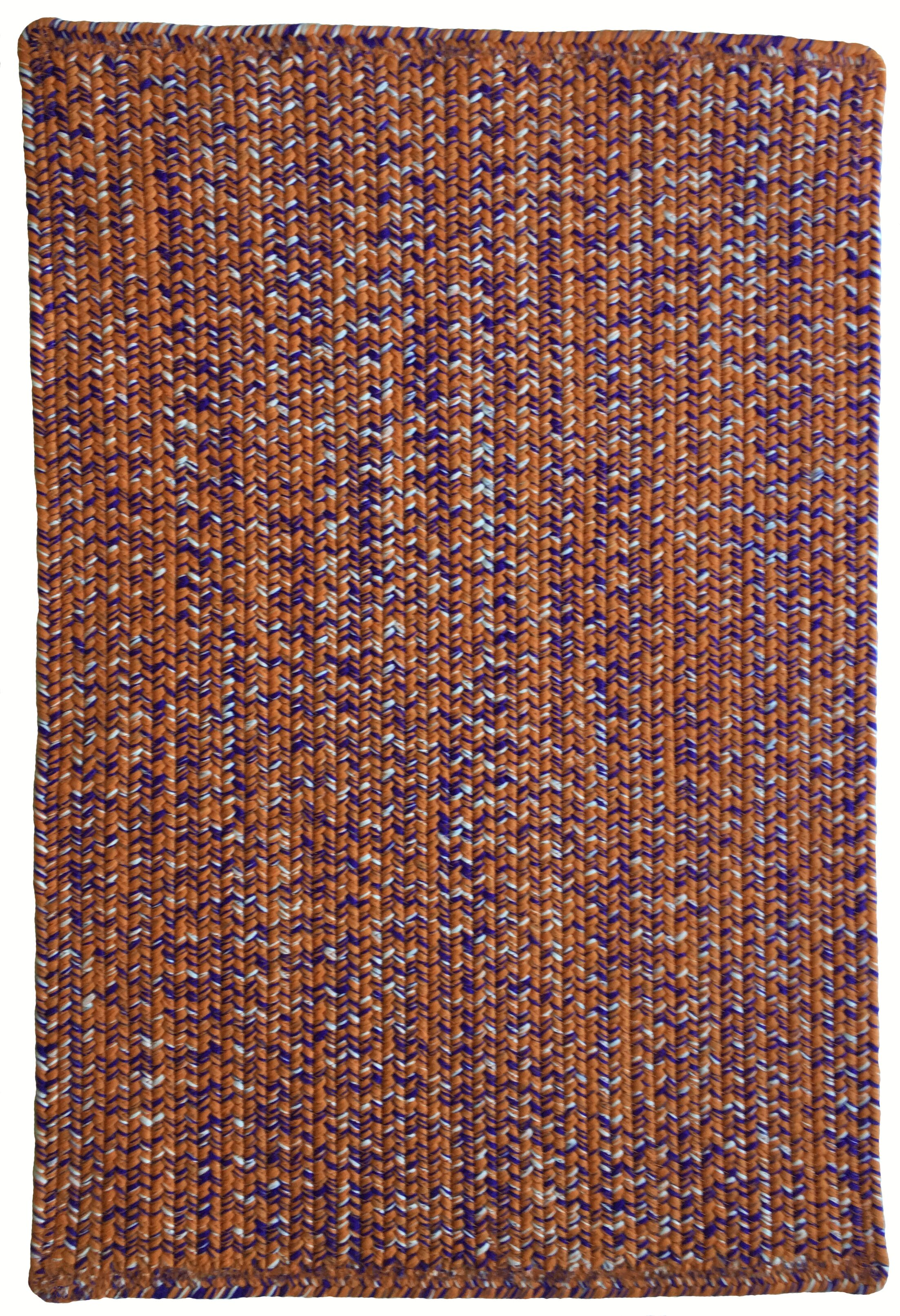 One-of-a-Kind Aukerman Hand-Braided Orange/Purple Indoor/Outdoor Area Rug Rug Size: Rectangle 4' x 6'