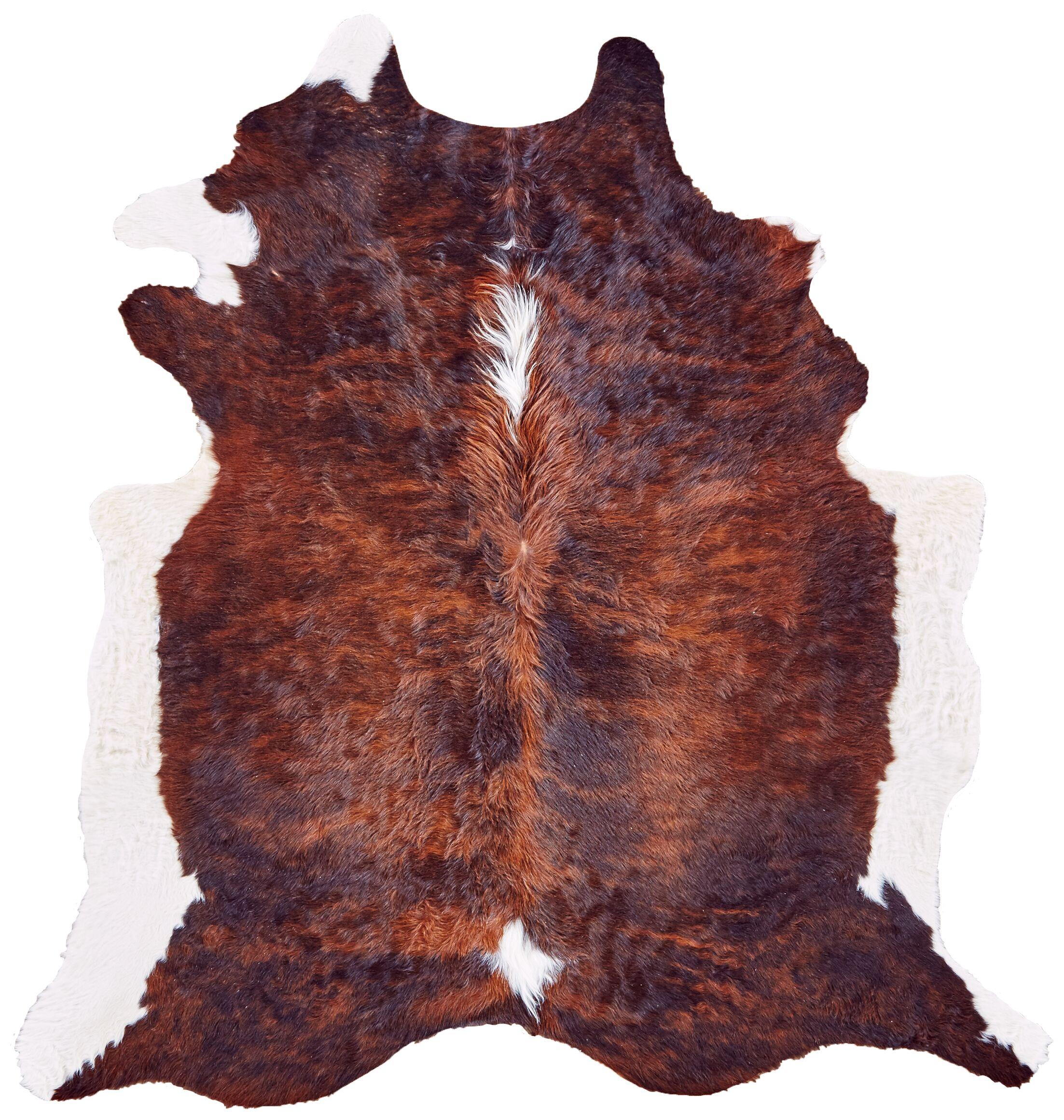 Cyprian Brown Area Rug
