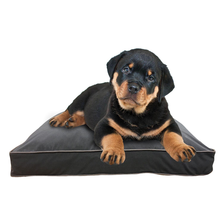 Doggybo Pillow Size: 42