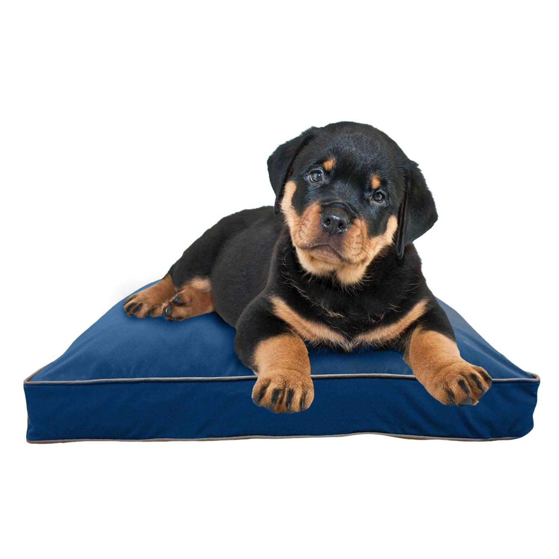 Doggybo Pillow Size: 25