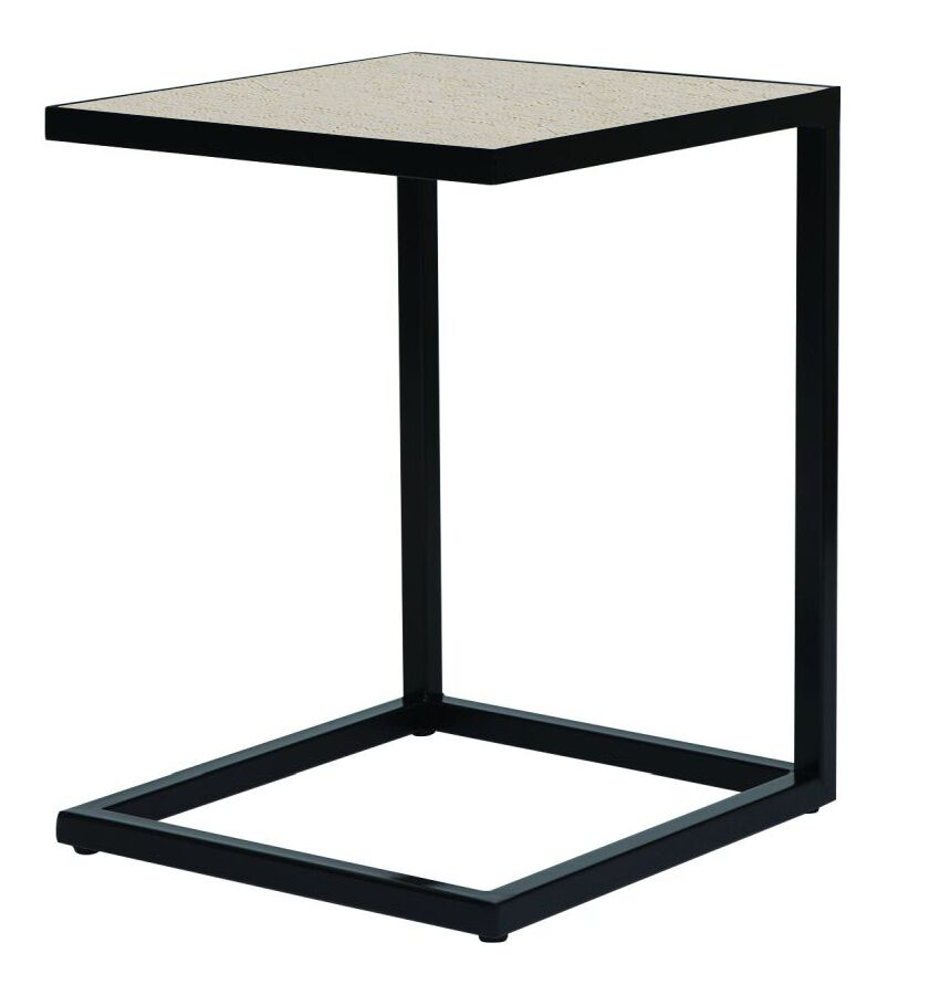 Gauthier Frame End Table Table Top Color: Crude