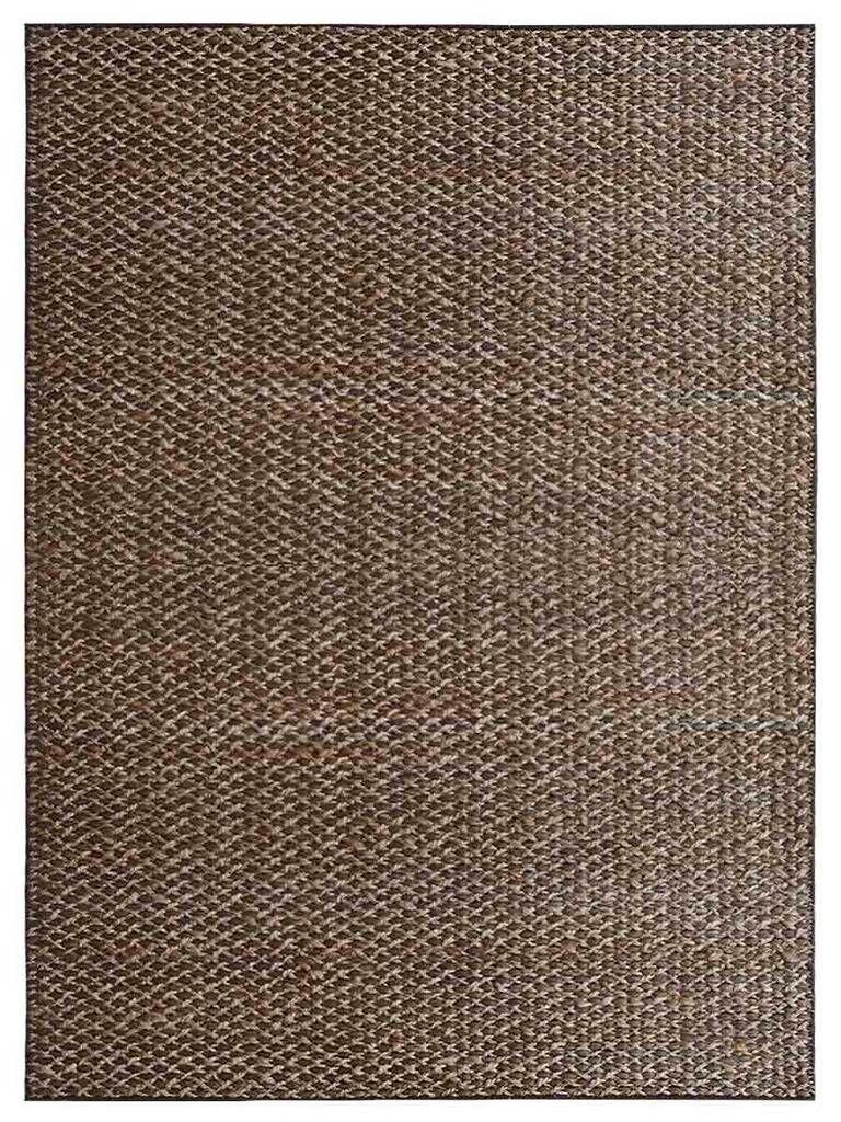 Housel Light Brown Indoor/Outdoor Area Rug Rug Size: Rectangle 3' x 5'