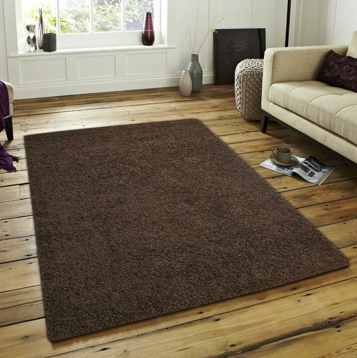 Michel Solid Modern Plush Brown Area Rug Rug Size: Rectangle 5'1