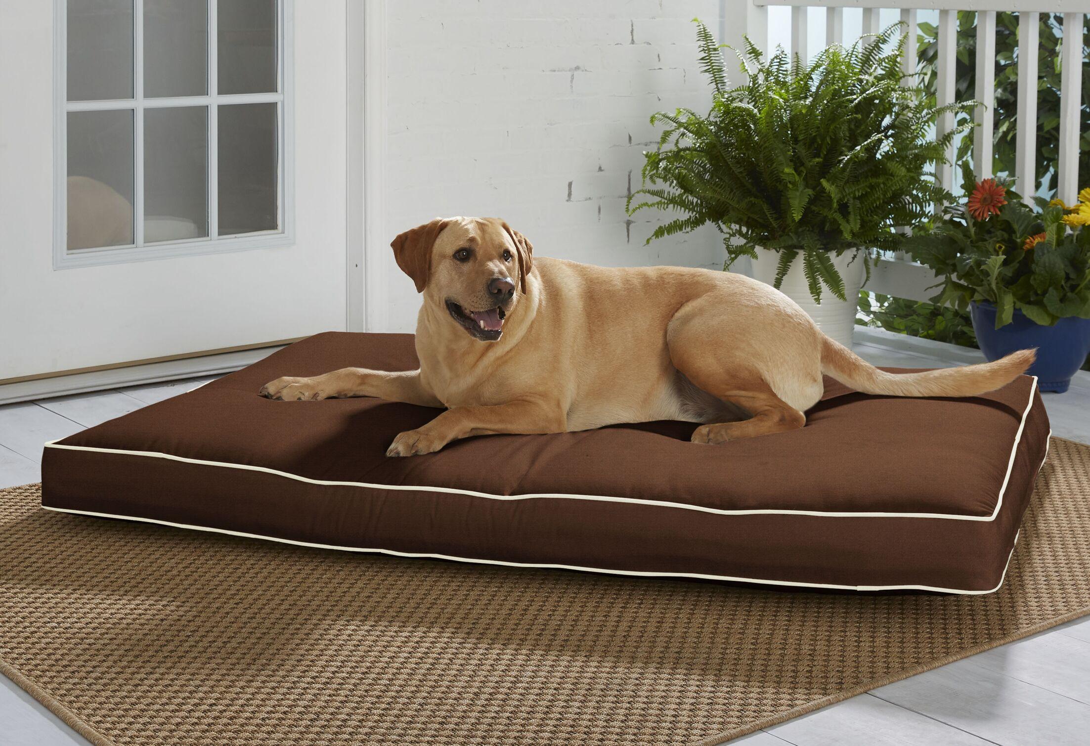 Chriopher Sunbrella Pillow/Classic Size: Extra Large (54