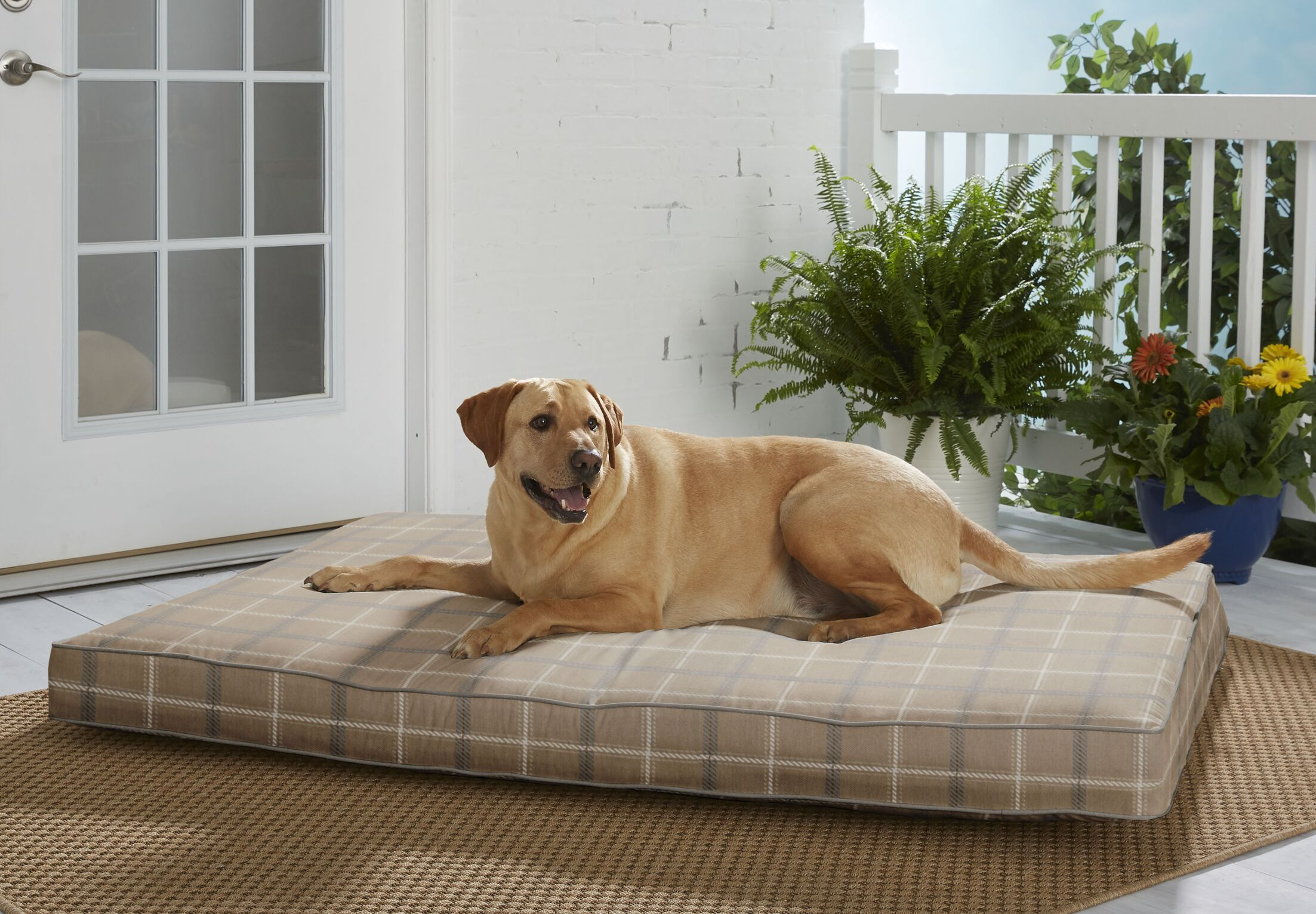 Anselmo Sunbrella Pillow/Classic Size: Extra Large (54