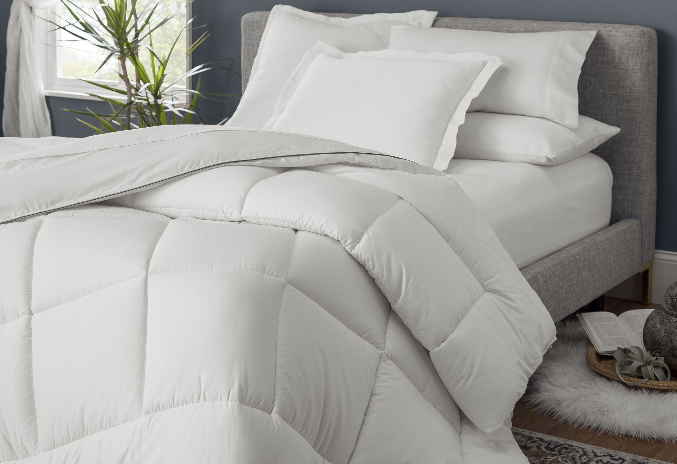All Season Down Alternative Comforter Size: Full / Queen