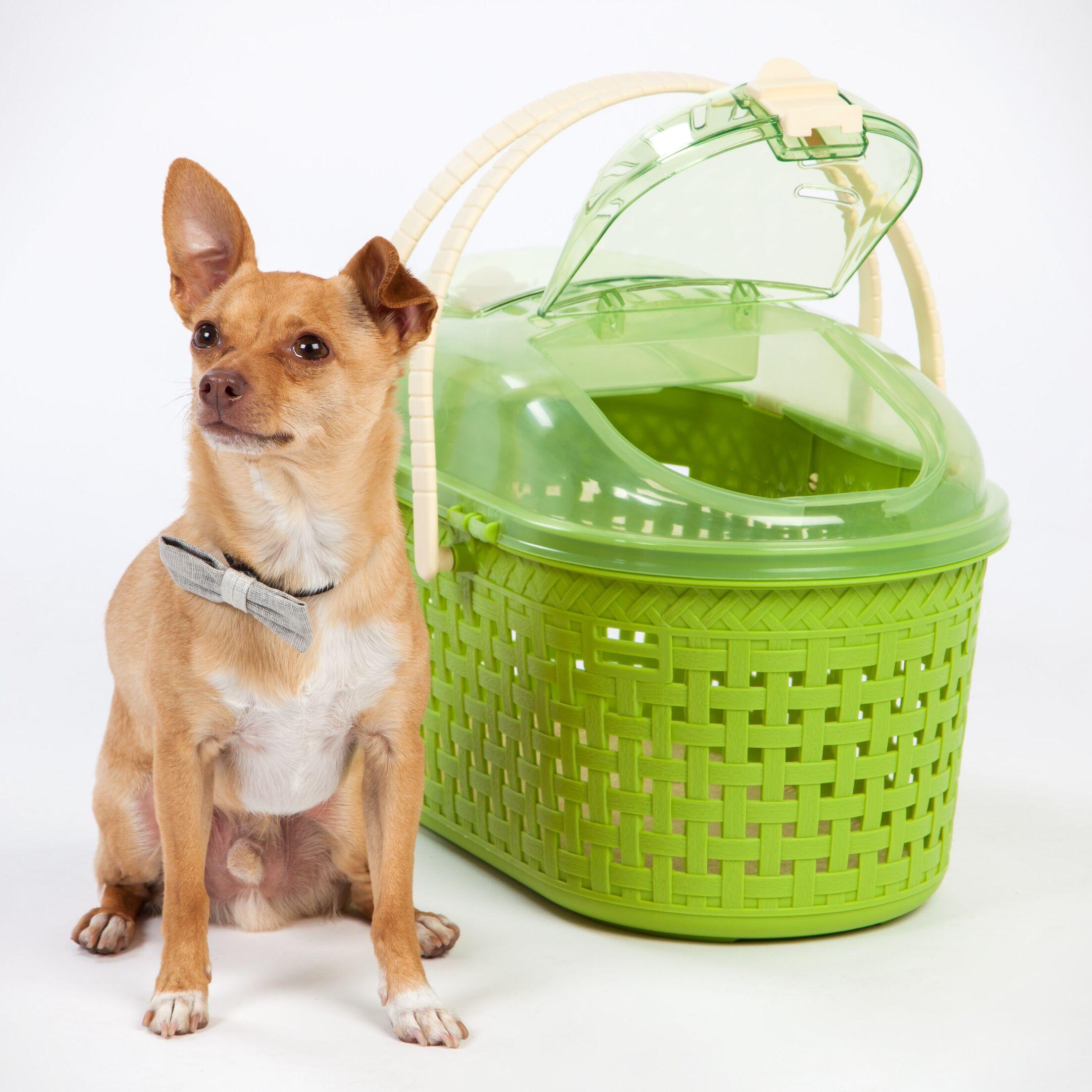 Ralph Pet Carrier Color: Green