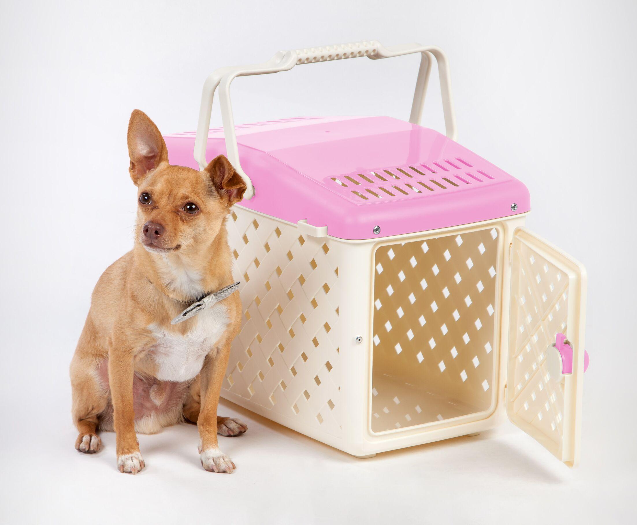 Ramsey Pet Carrier Color: Pink