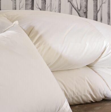 Concerto Premier All Season Down Comforter Size: Twin