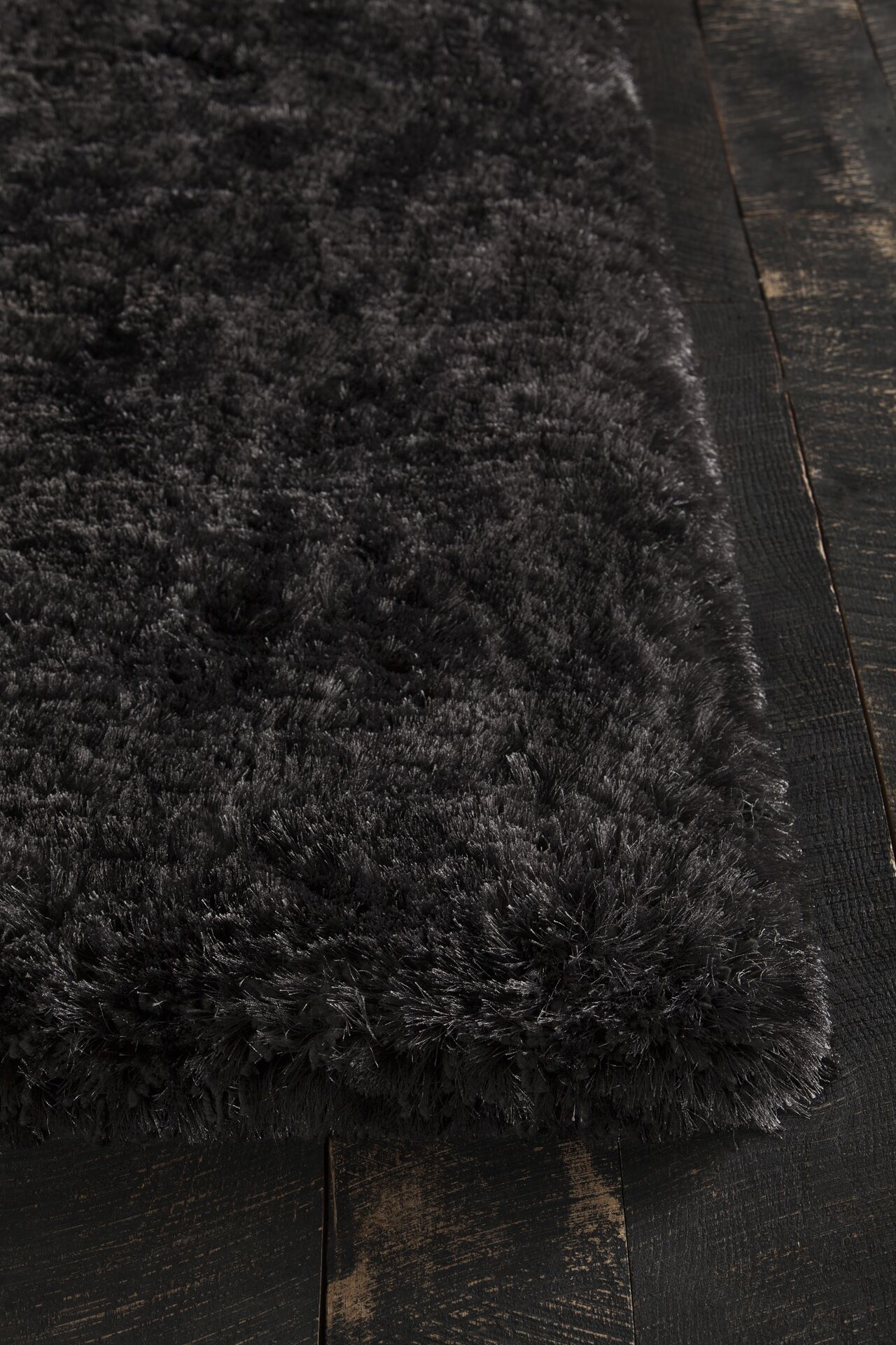 Joellen Black Area Rug Rug Size: Rectangle 5' x 7'6