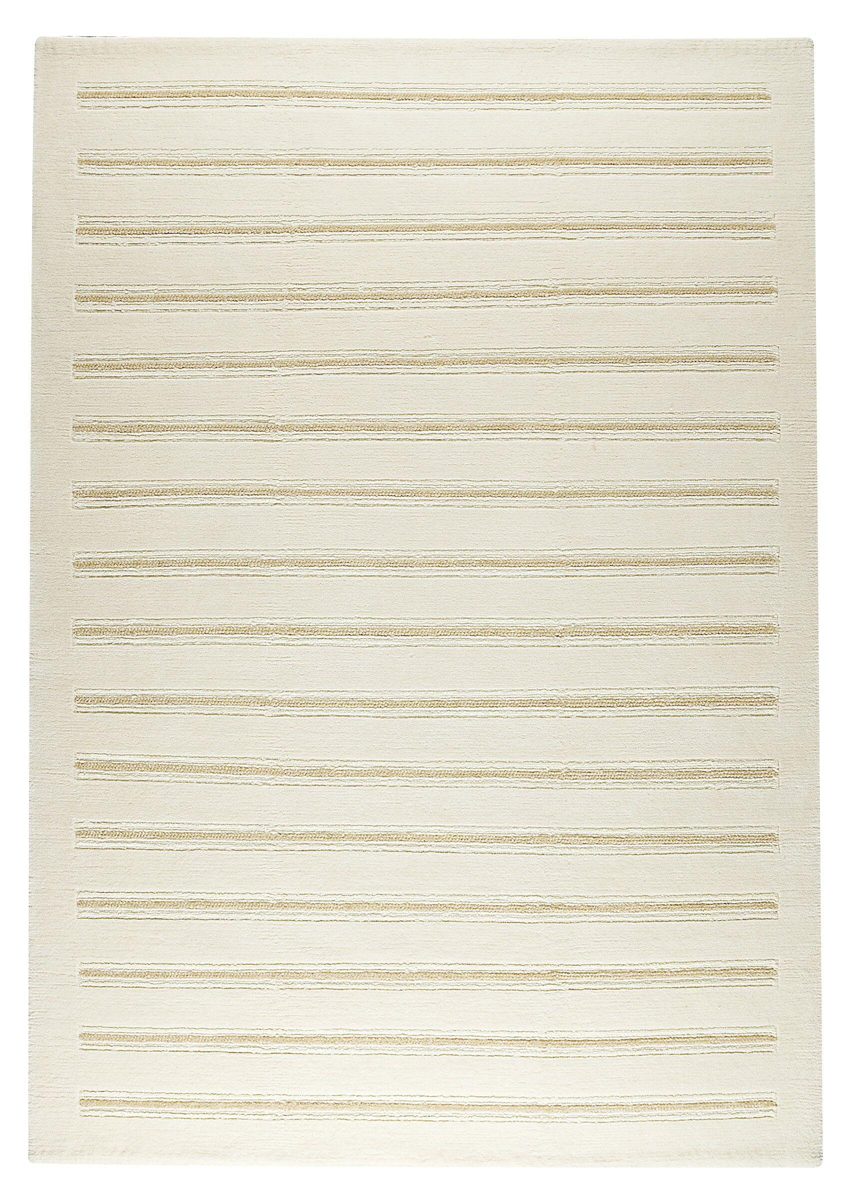 Hickson White Rug Rug Size: 5'6