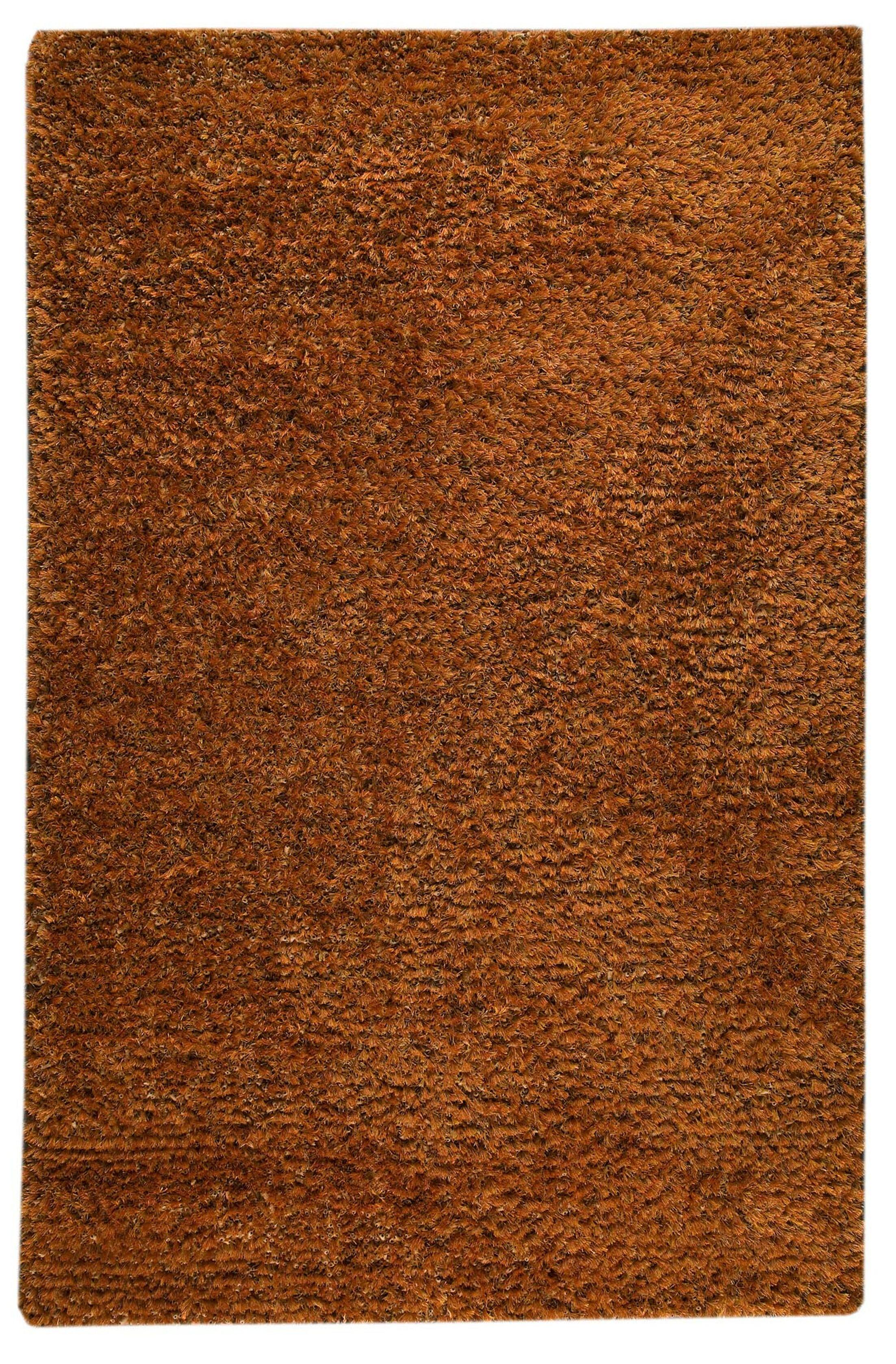 Back Bay Orange Area Rug Rug Size: 5' x 8'