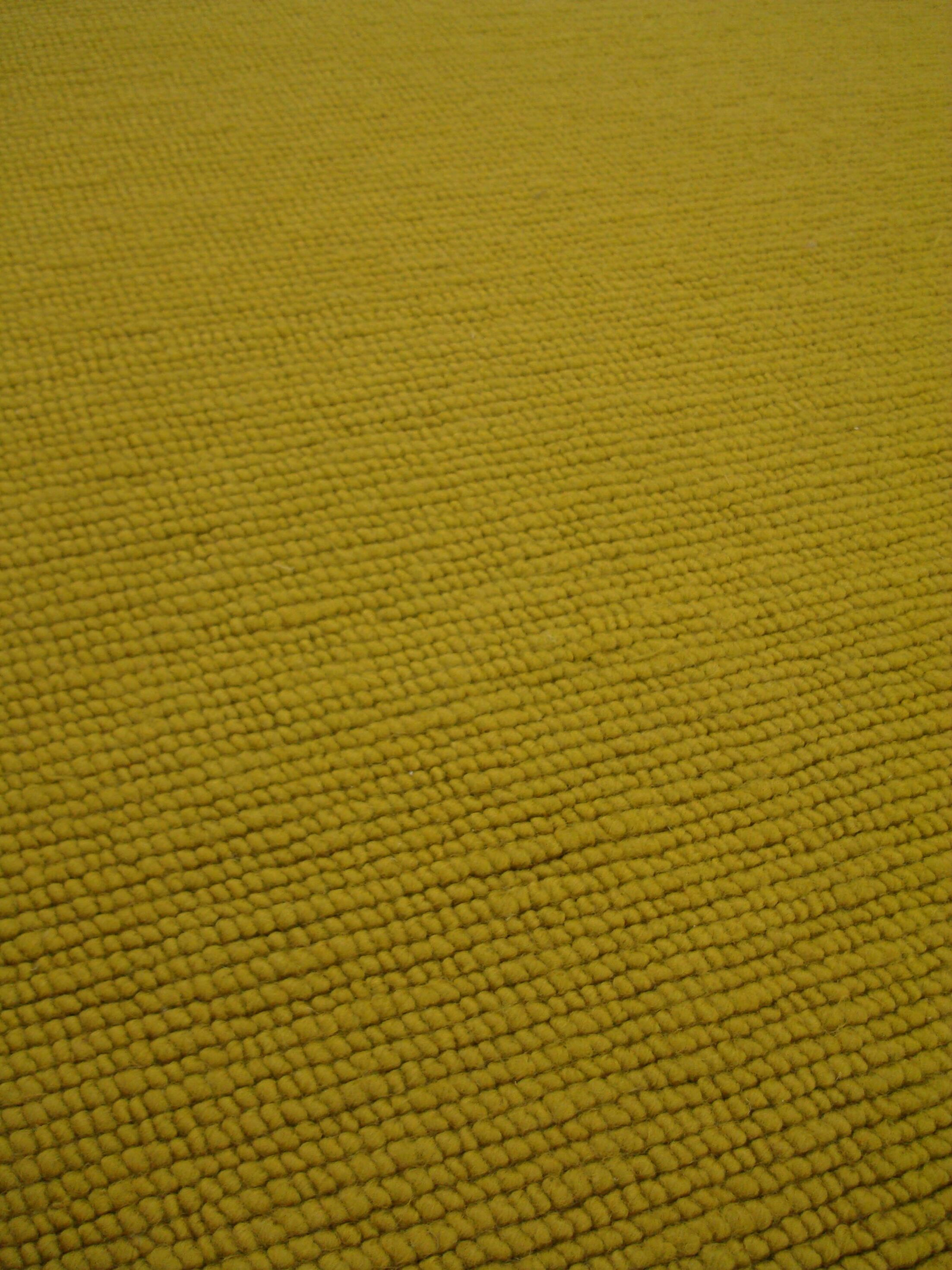Clarence Olive Area Rug Rug Size: Rectangle 4'6