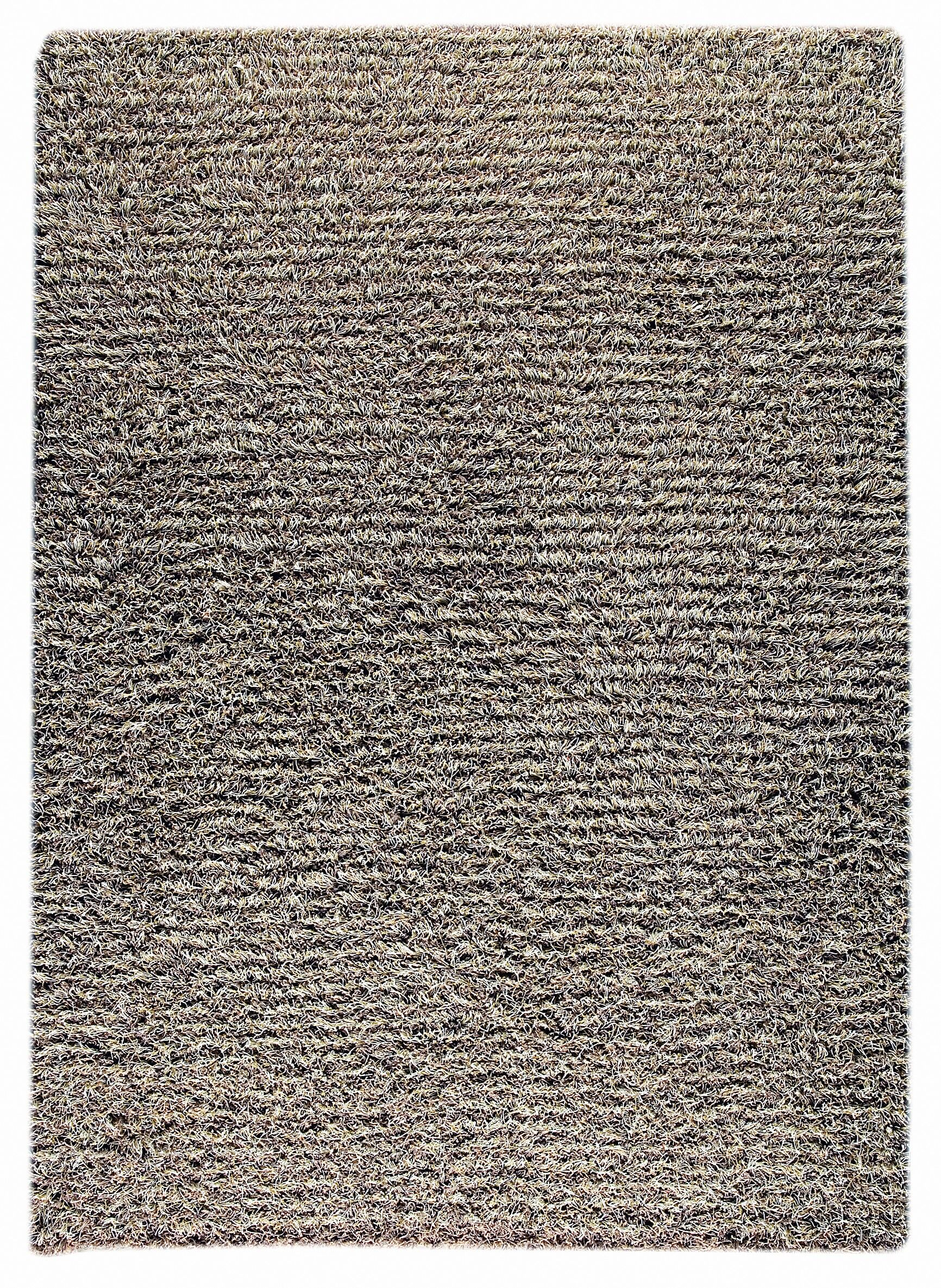 Cedarville knotted Grey/Beige Area Rug Rug Size: 5'6