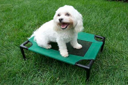 The Lazy Pet Cot Size: Small (24