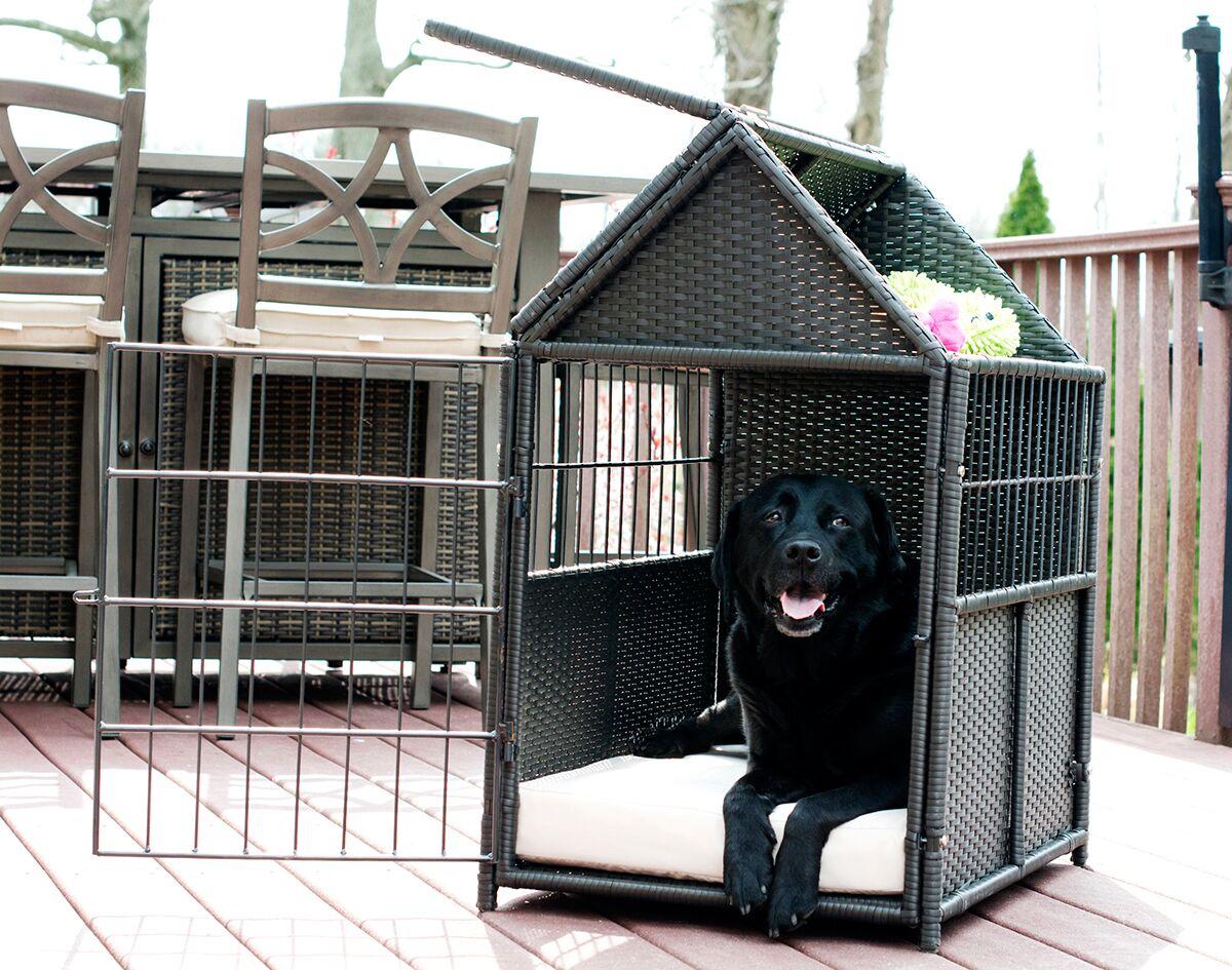 Daisy Pet Crate