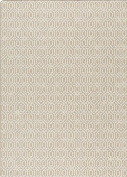 Broom Beige Area Rug Rug Size: Rectangle 5'4