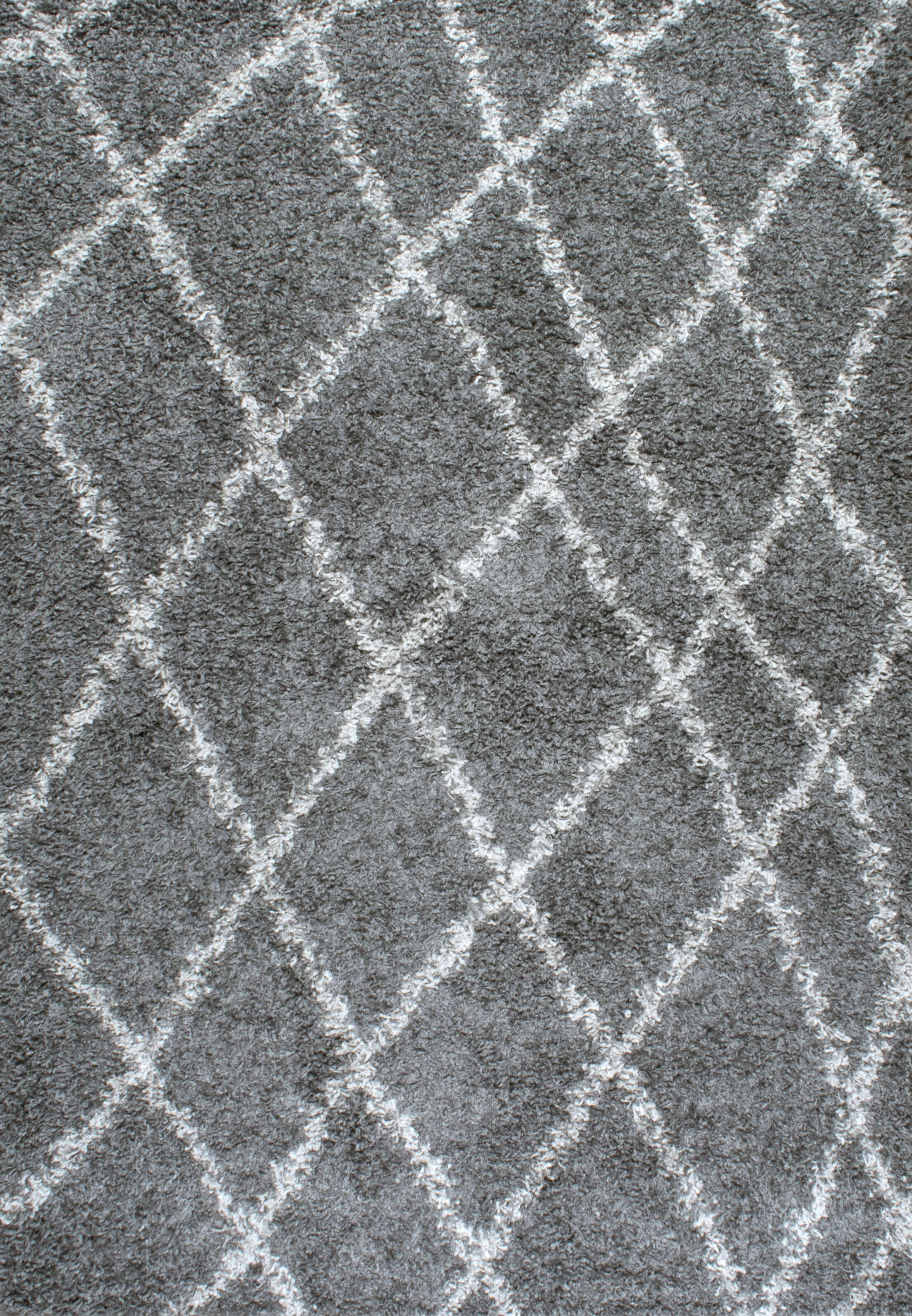 Bousquet Gray Area Rug Rug Size: Rectangle 4' x 6'