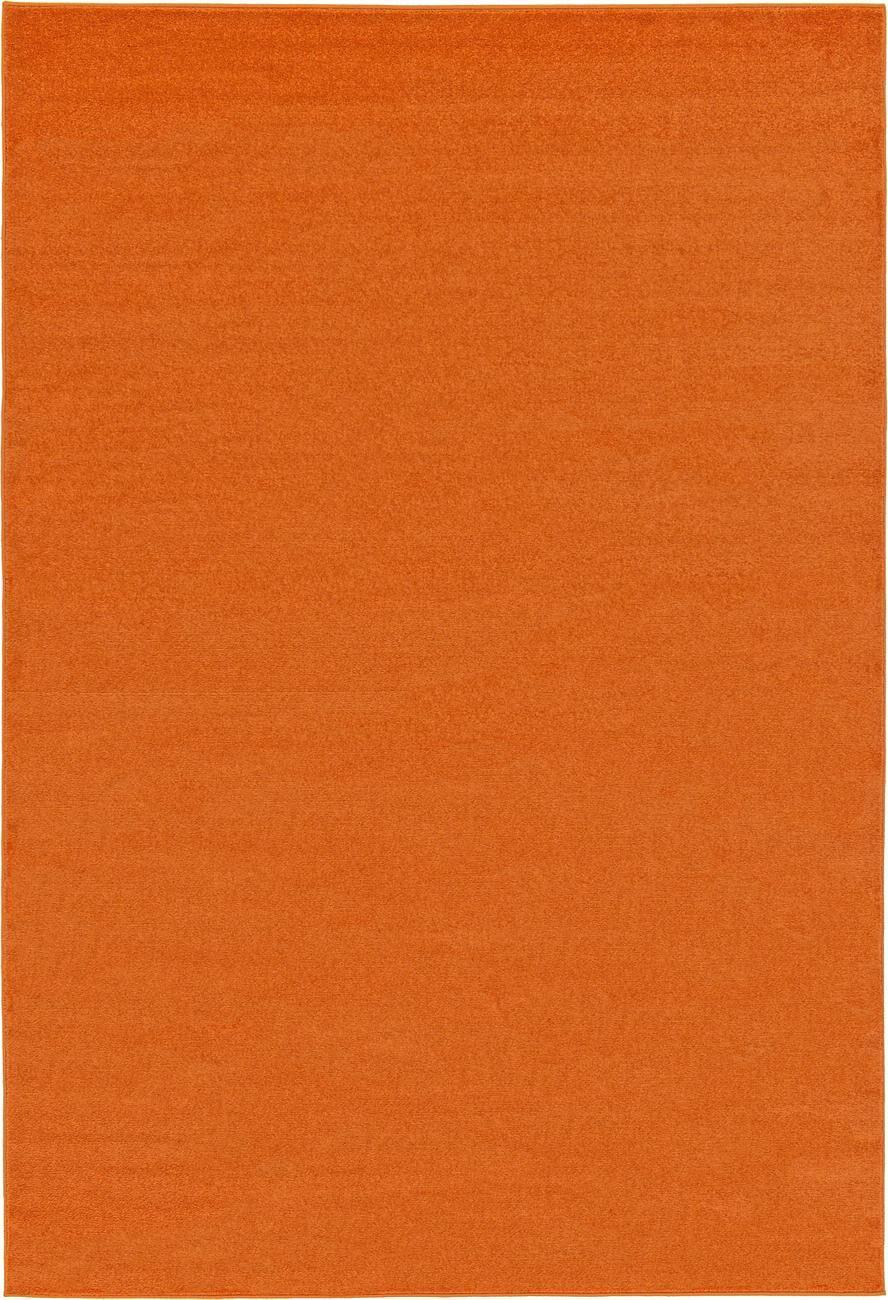 Hugh Terracotta Area Rug Rug Size: Rectangle 9'10