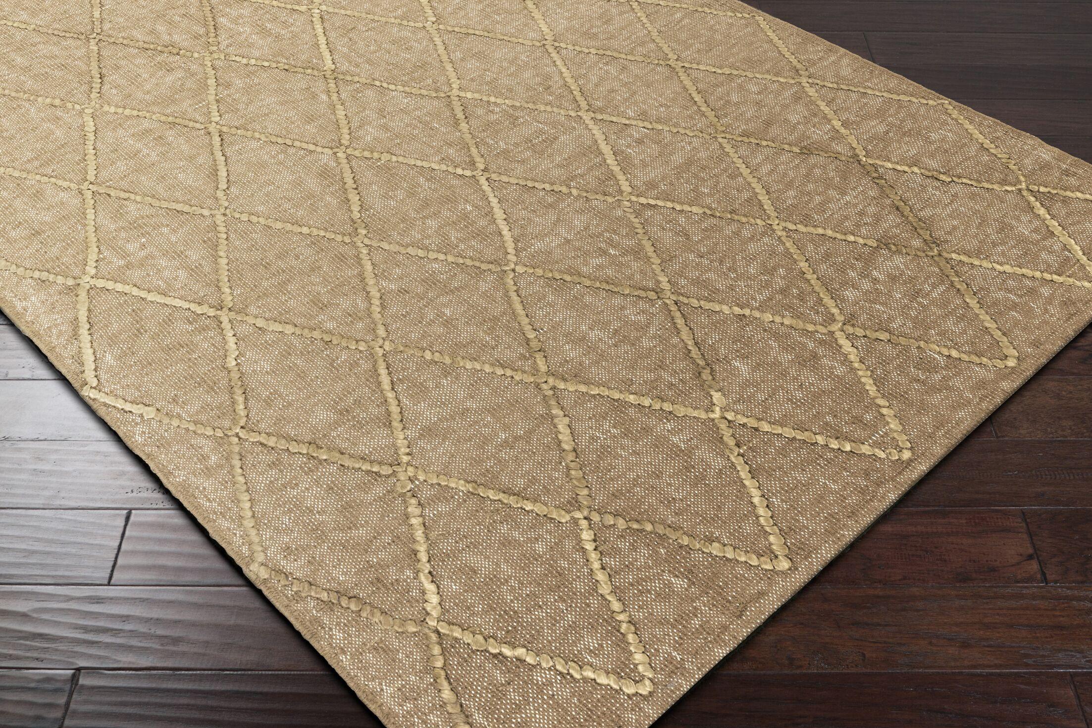 Rachelle Hand-Woven Brown Area Rug Rug Size: Rectangle 9' x 13'