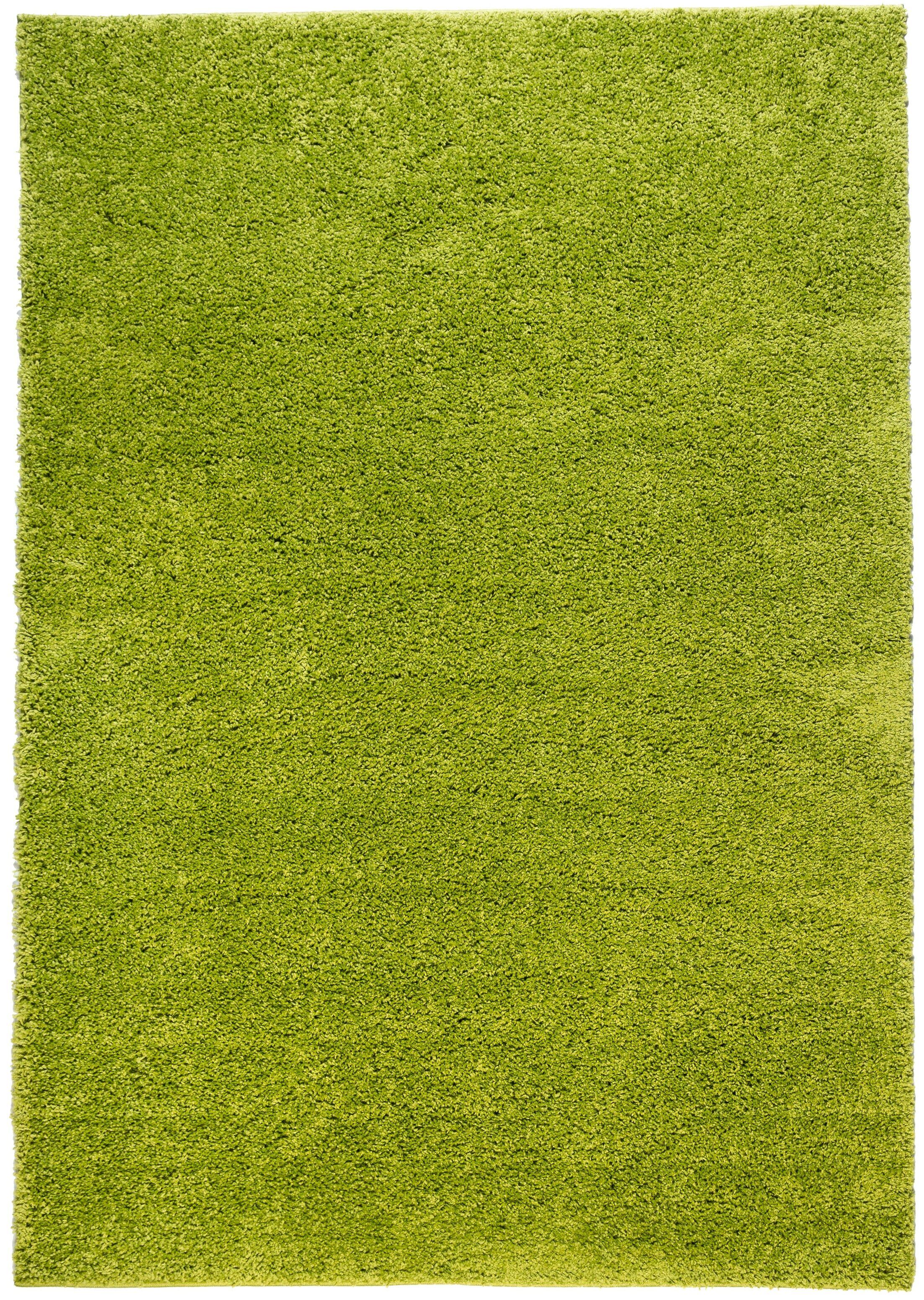 Reynolds Plain Solid Green Area Rug Rug Size: 5' x 7'2