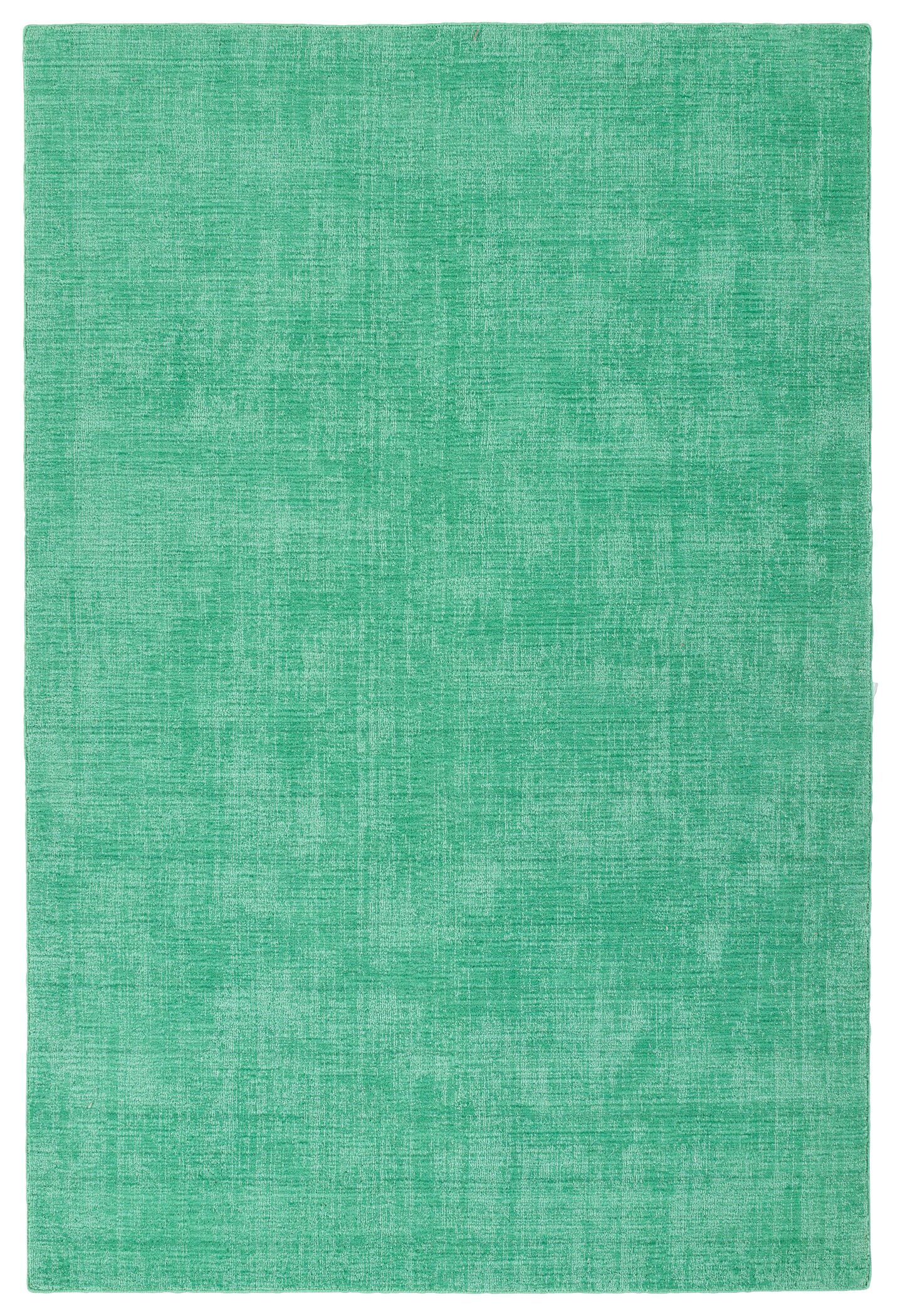 Allibert Hand-Loomed Mint Indoor/Outdoor Area Rug Rug Size: Rectangle 5' x 7'6