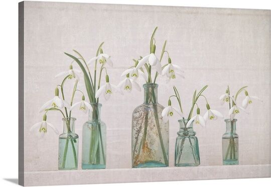 'Snowdrops Bottles' by Cora Niele Photographic Print