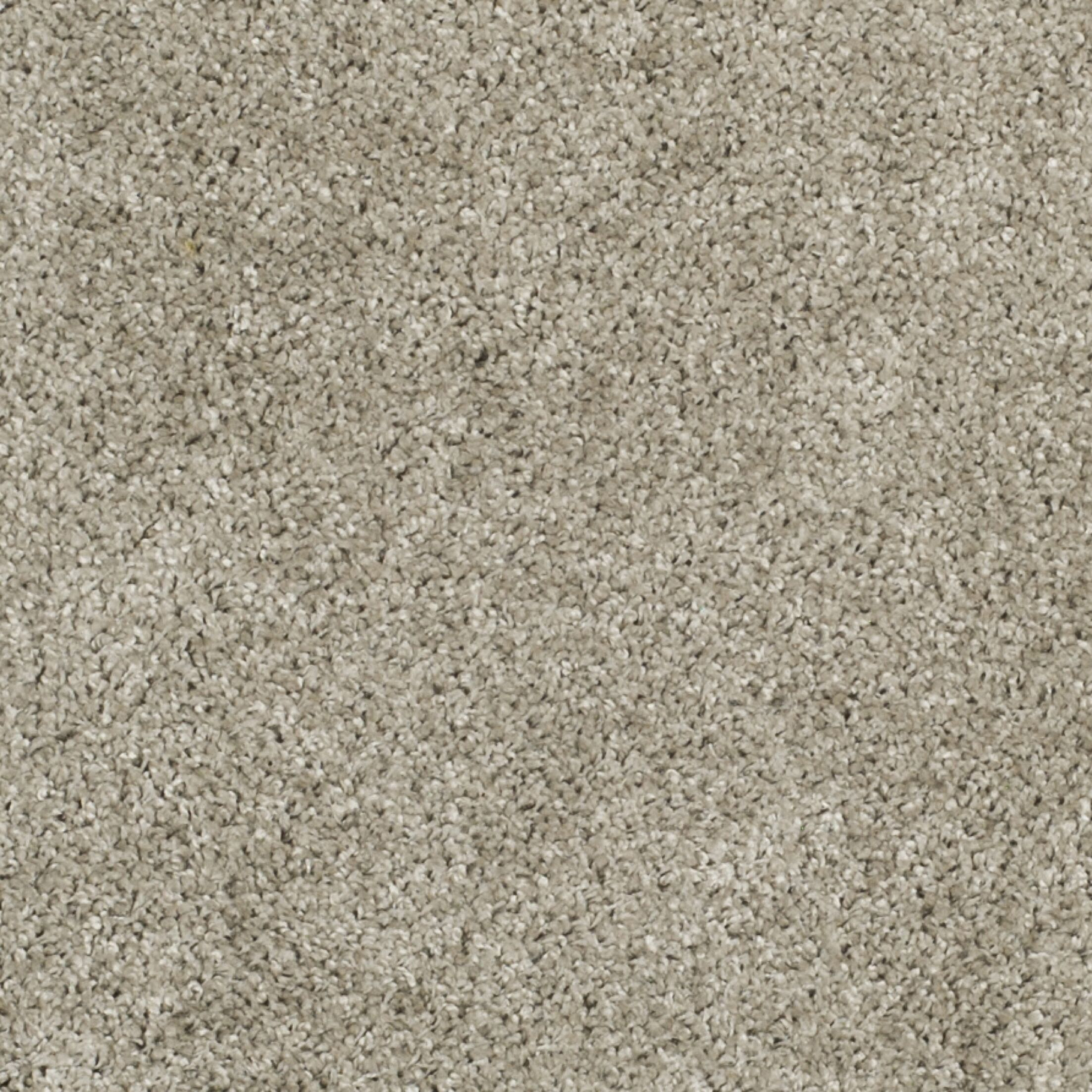 Curran Silver Area Rug Rug Size: Round 6'7