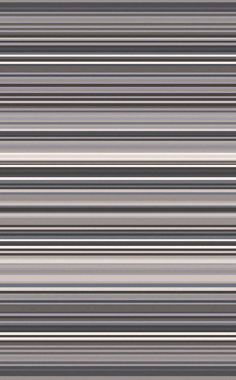 Bradley Gray Stripe Area Rug Rug Size: Rectangle 3'3