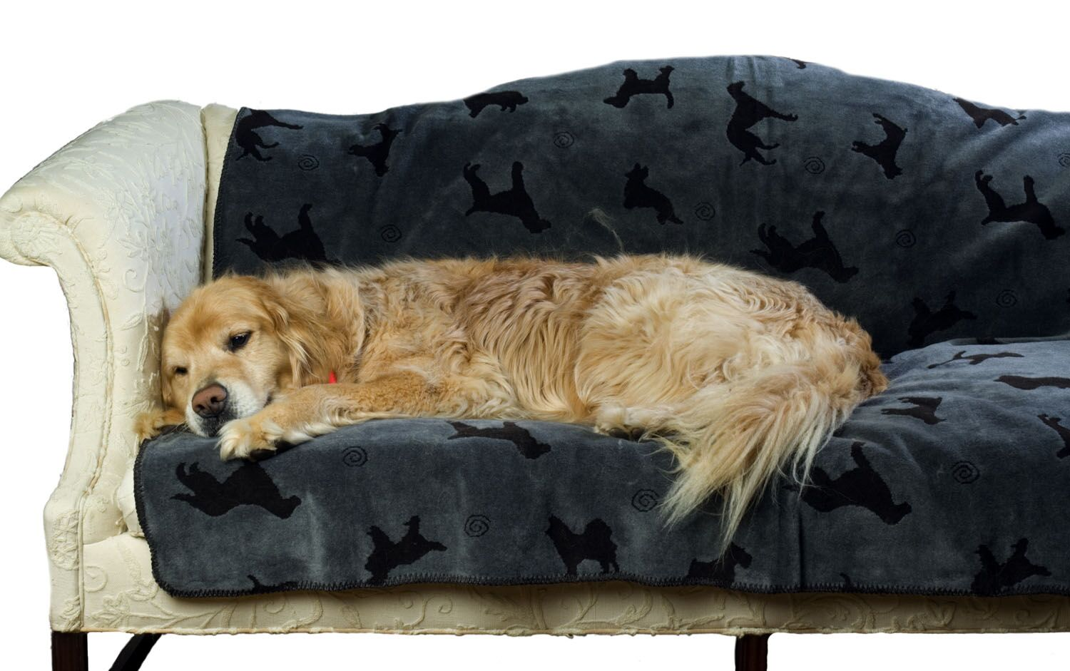 Arley Plush Embossed Dog Throw Blanket in Charcoal Size: X-Large