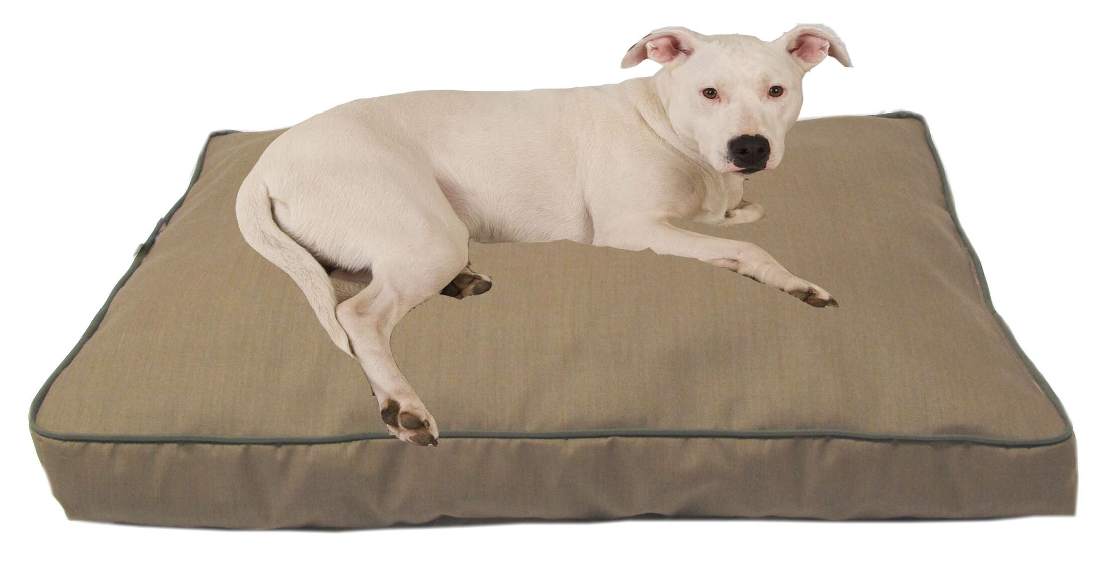Dane Indoor/Outdoor Dog Bed with Cording in Solid Tan Size: Large