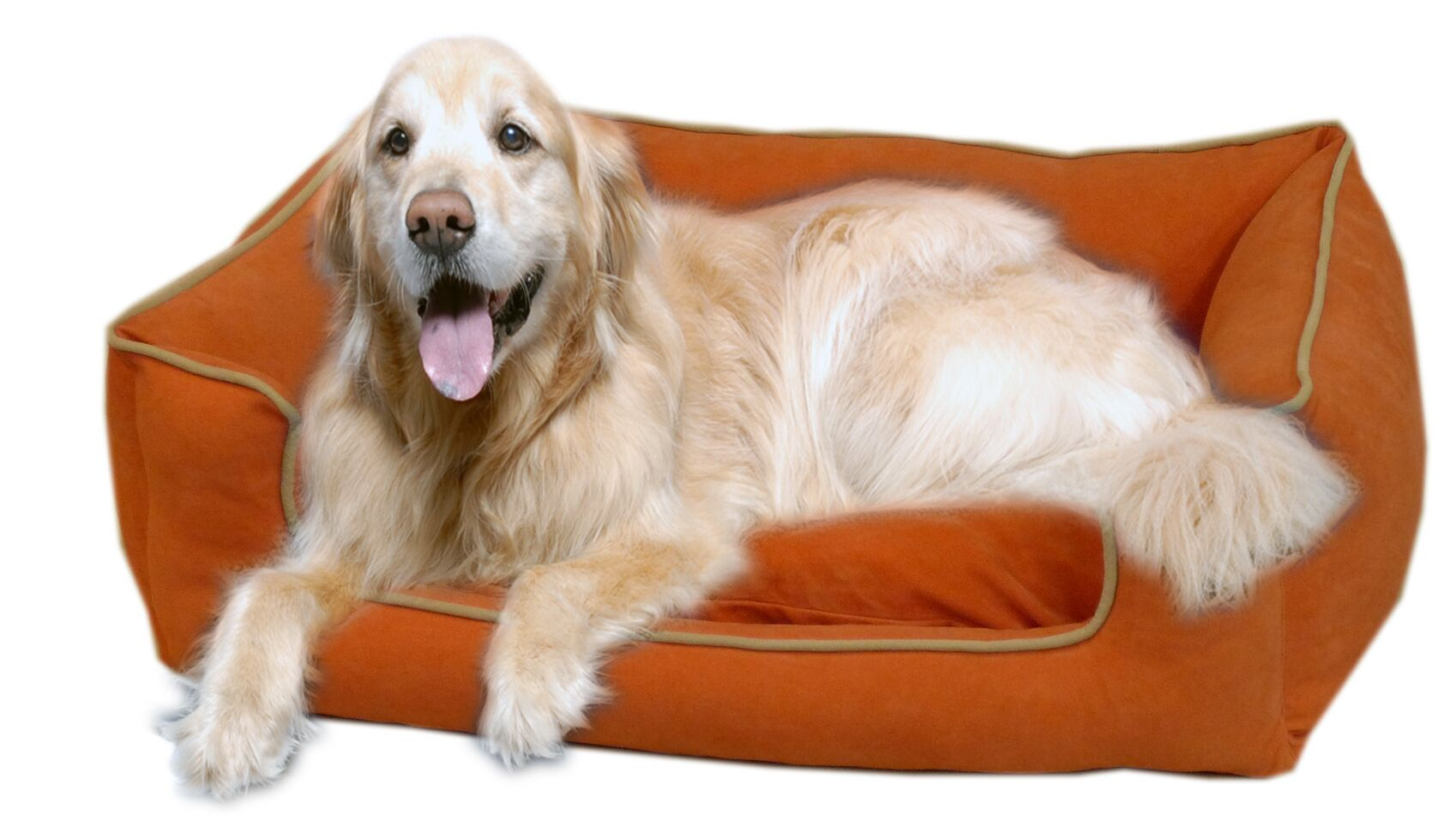 Calypso Timothy Pet Bed Size: Large (42