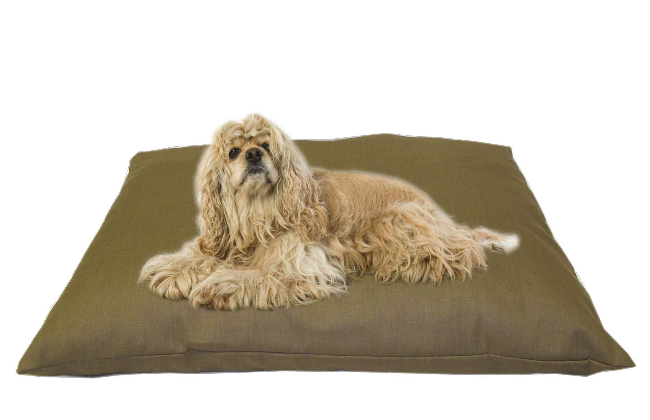 Cricket Indoor/Outdoor Shegang Dog Bed in Solid Tan Size: Medium