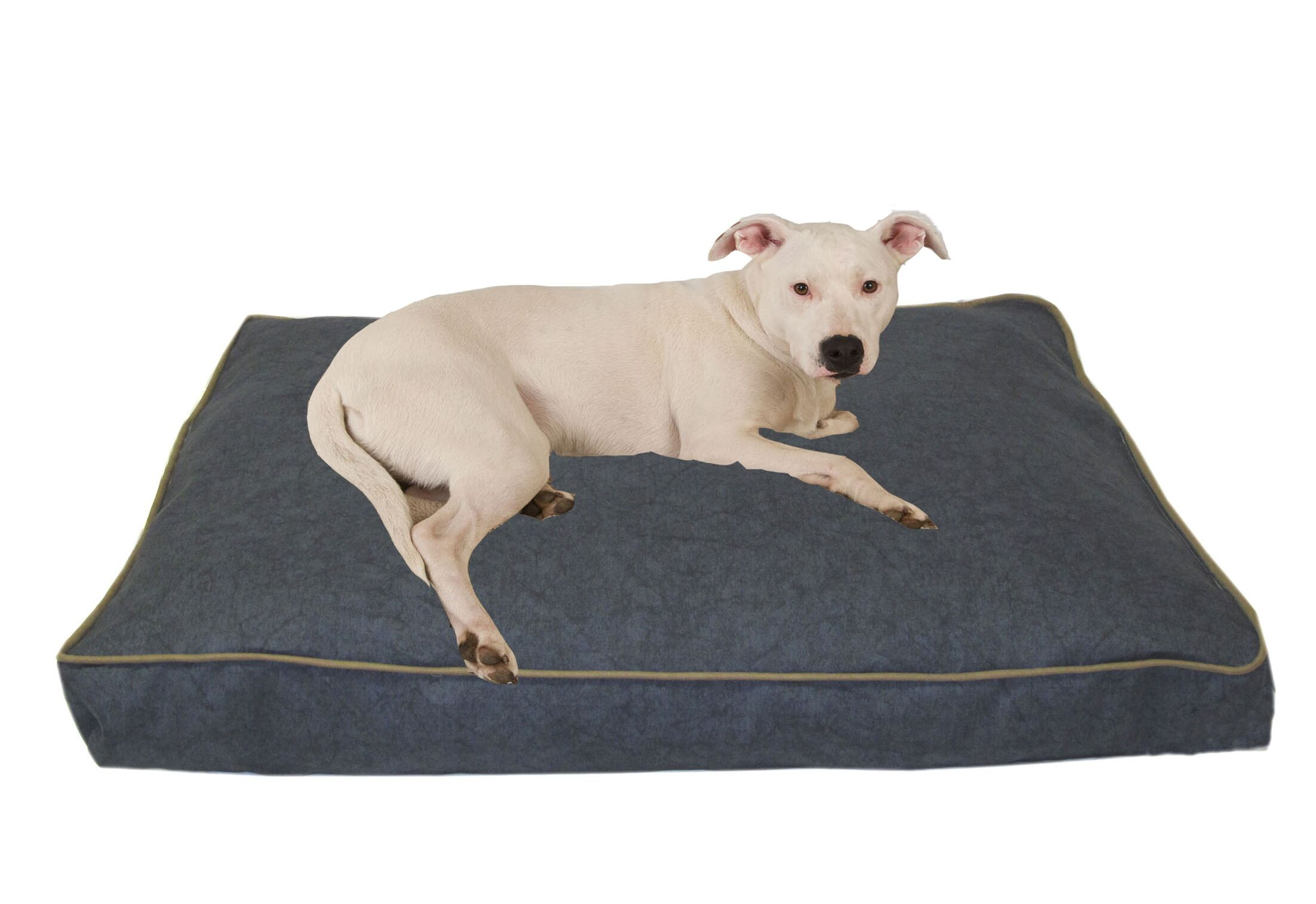 Indoor/Outdoor Dog Bed with Cording in Solid Blue Size: Large