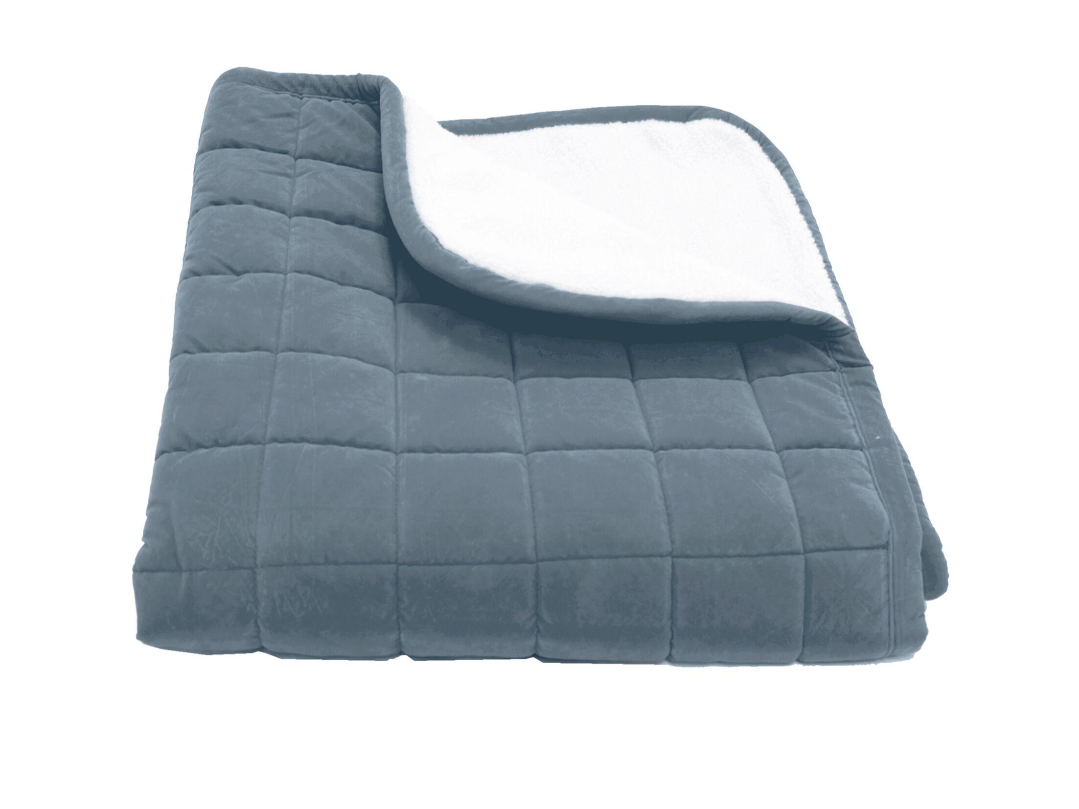 Eton Box Quilt Microfiber & Sherpa Pet Throw in Blue Size: Medium