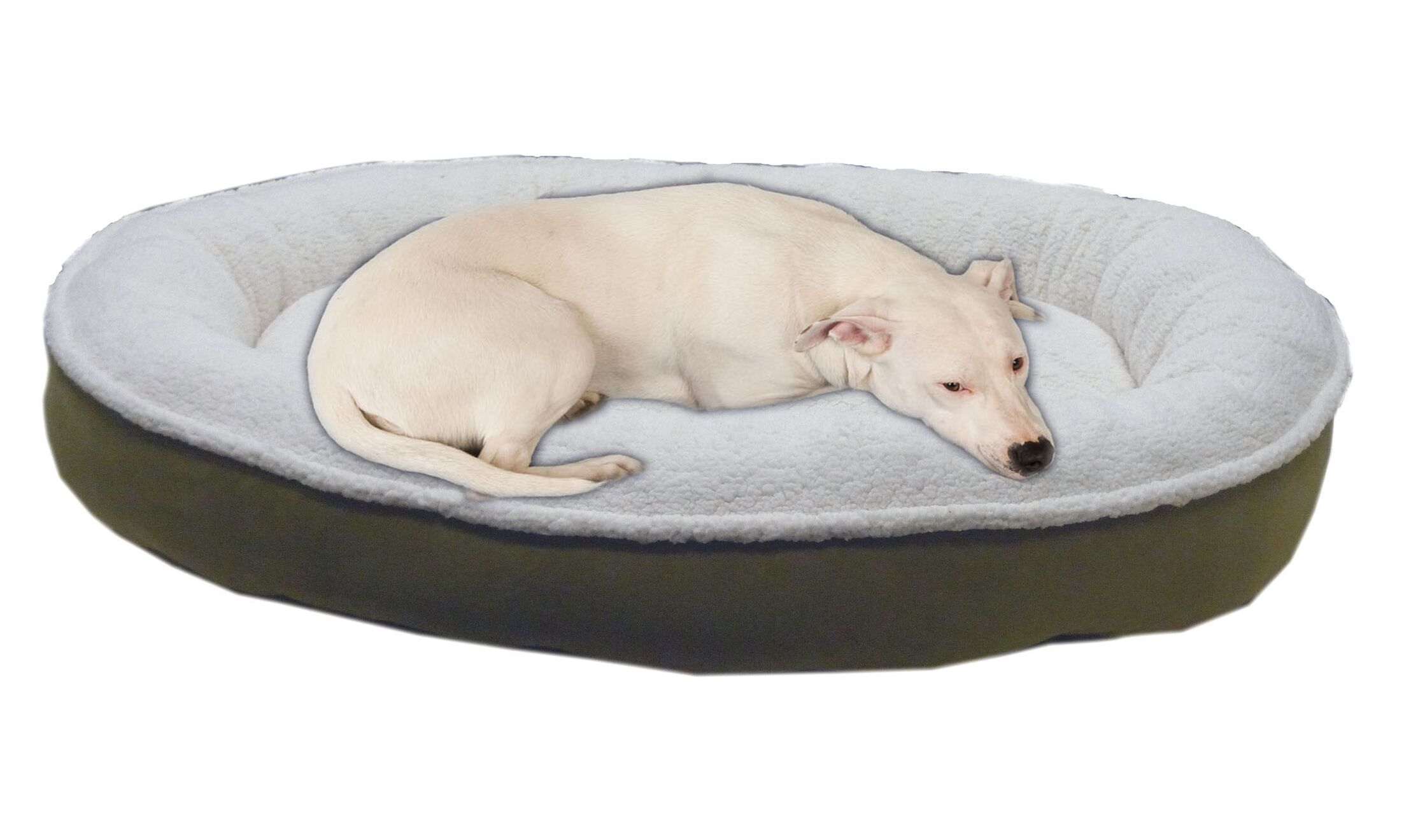 Cloud Sherpa and Faux Suede Comfy Cup Dog Pillow Size: Medium (36