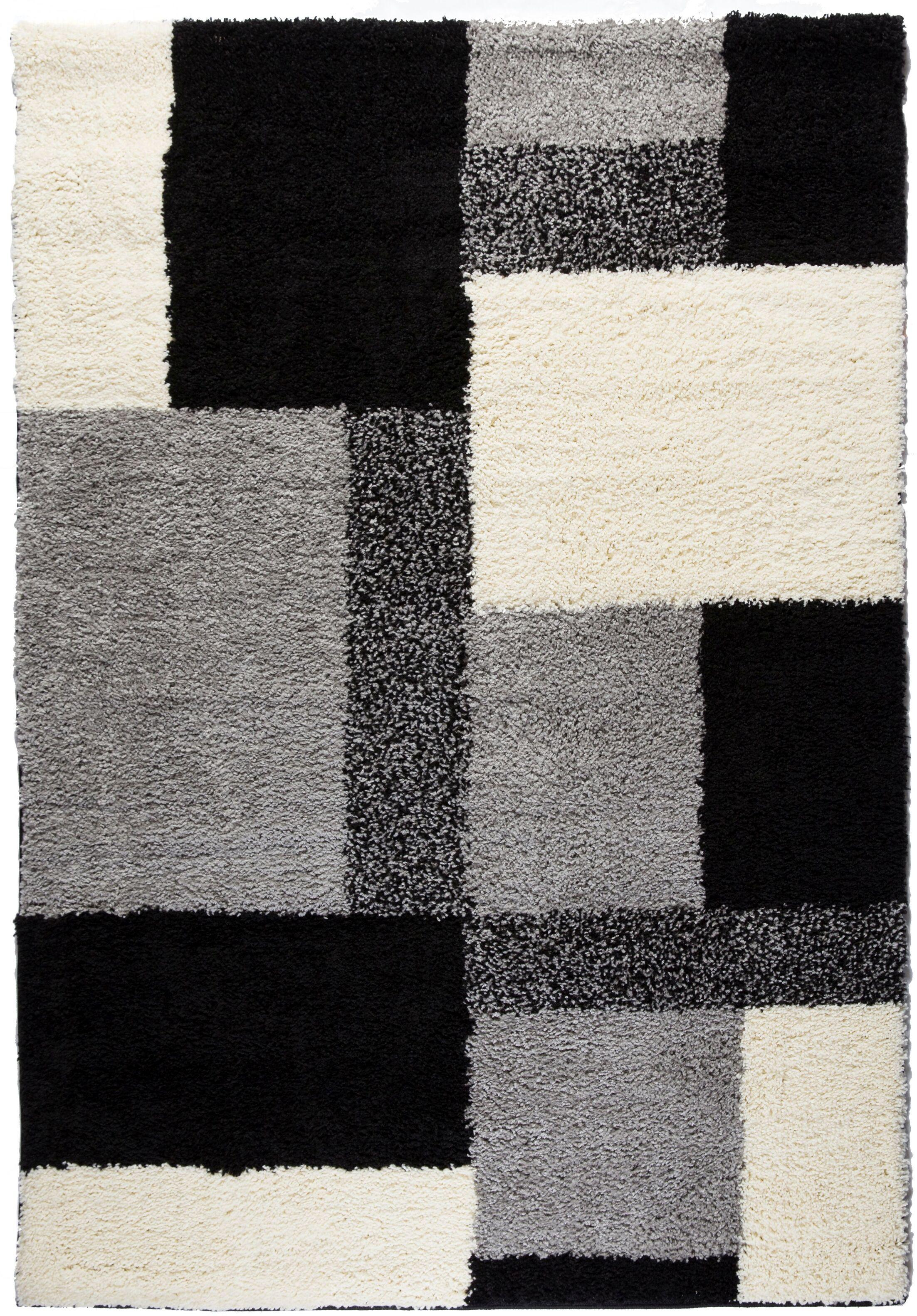 Madison Shag Black Cubes Area Rug Rug Size: 5' x 7'2