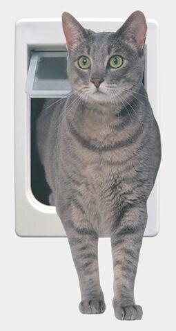 Tubby Kat with 4 Way Lock Pet Door