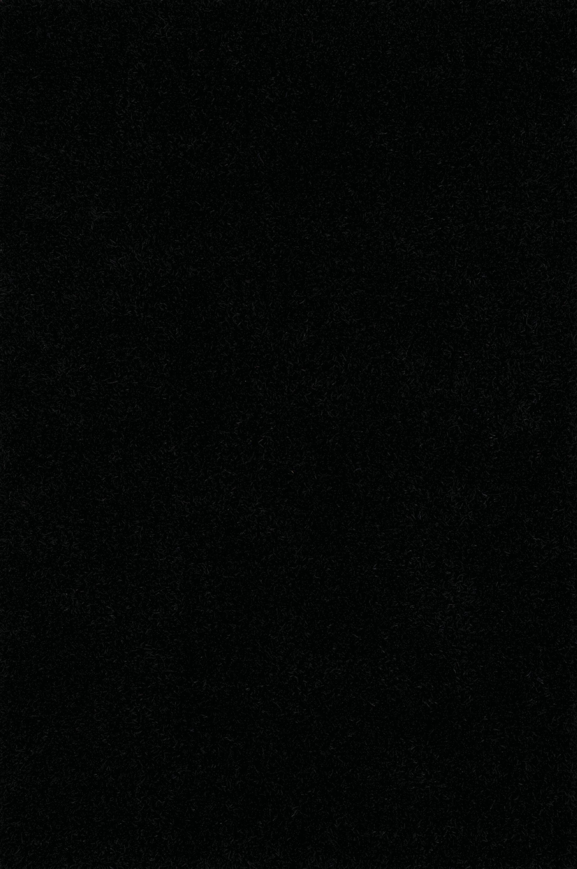 Nan Shag Black Area Rug Rug Size: Rectangle 5' x 7'6