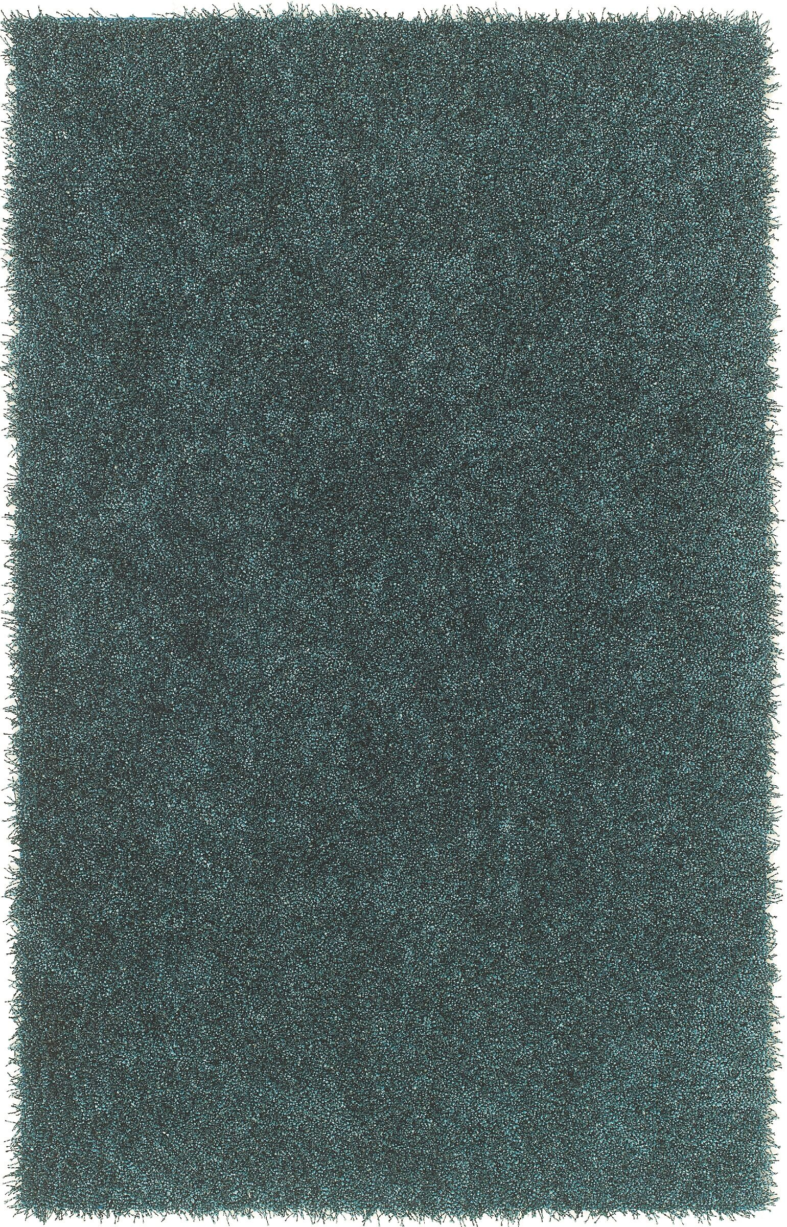 Belize Teal Balloon Area Rug Rug Size: Rectangle 5' x 7'6