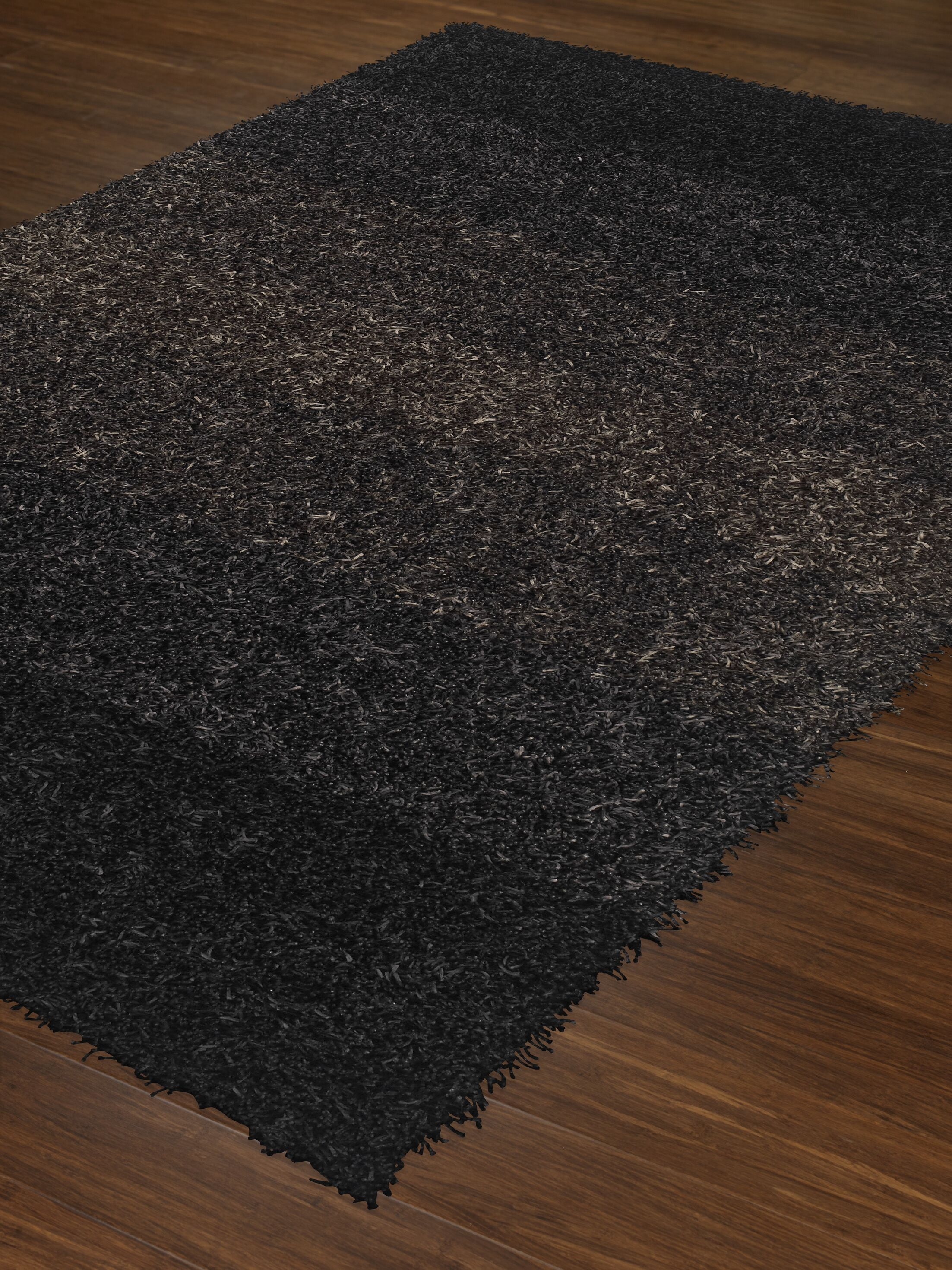 Nasiba Black Area Rug Rug Size: Rectangle 3'6
